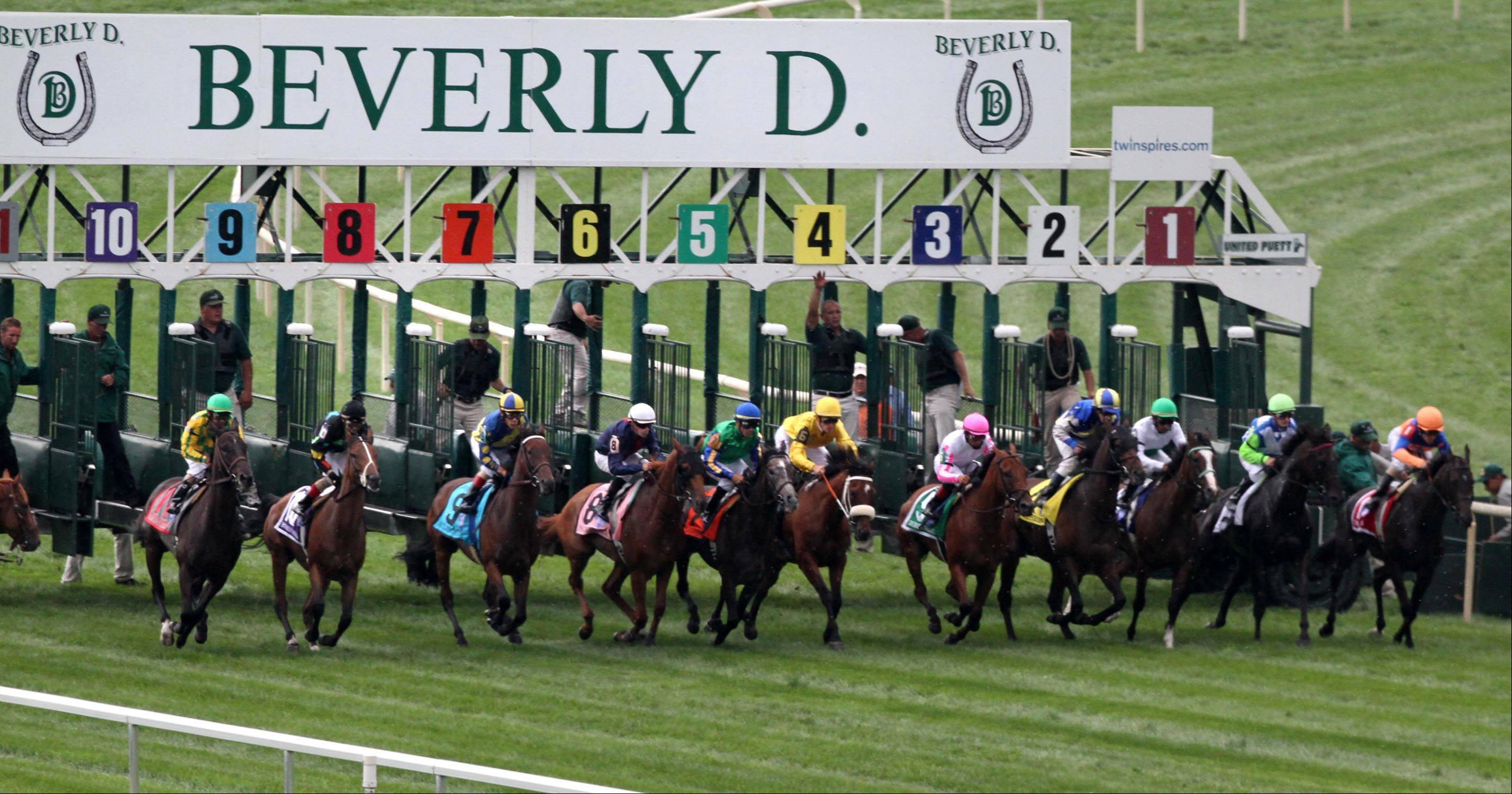 The start of the Beverly D at Arlington Park on Saturday.