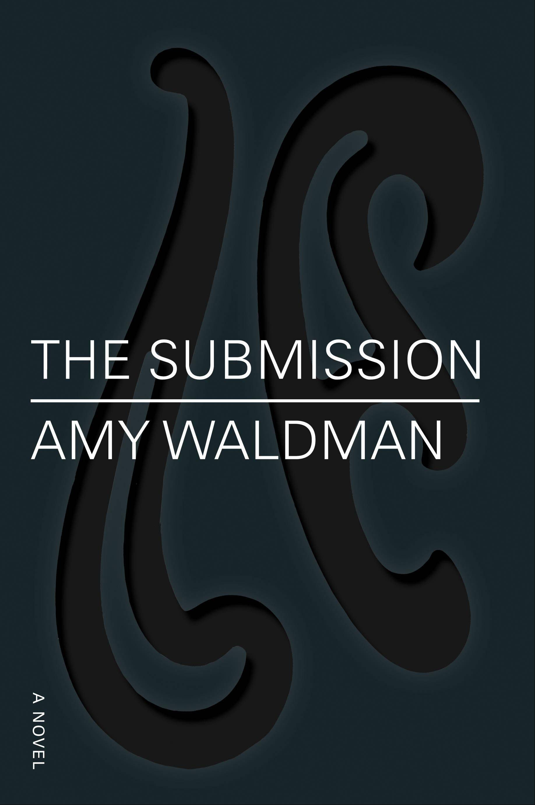"""The Submission"" by Amy Waldman"