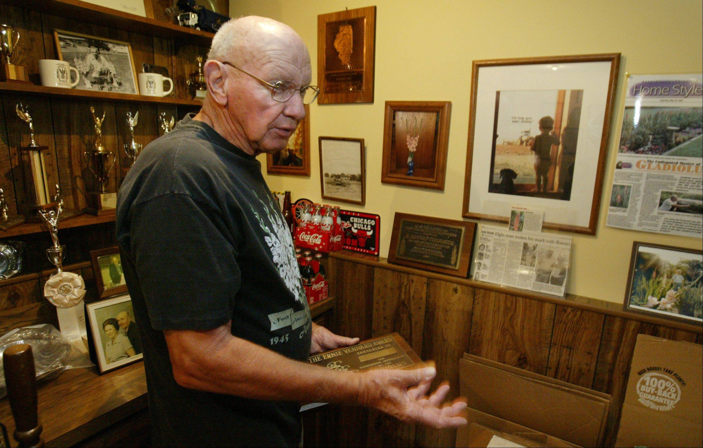 Ed Frederick talks about some of the many awards he has received over the years for his gladiolus. Only a small portion of the plaques and ribbons can be seen here. At 78, he still travels to out-of-state competitions with his gladioluses.
