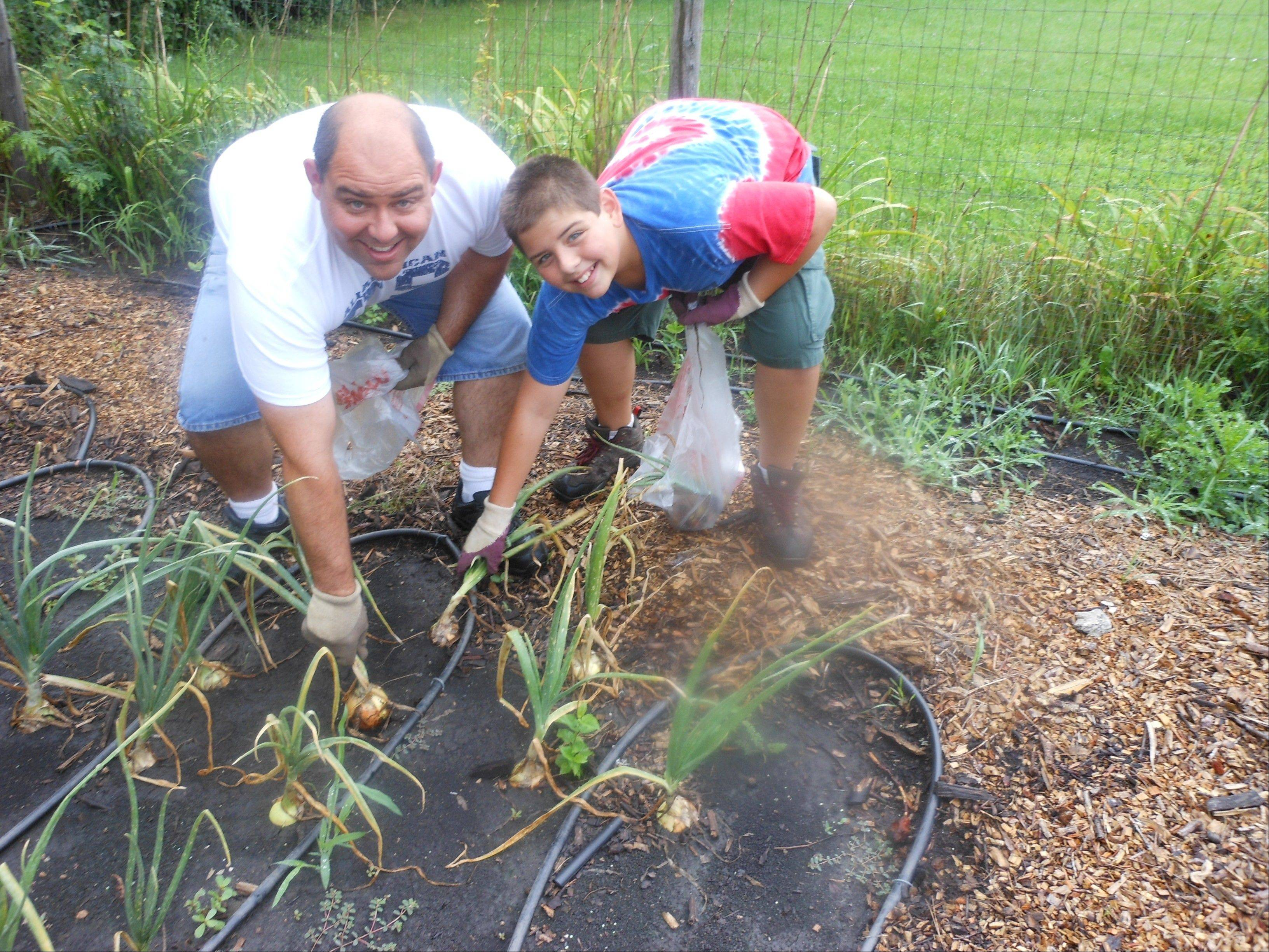 Andy Knapik, left, and his son, Joey, of Wheeling, tend to the garden at St. Alphonsus, which helps feed 150 families served by the church's food pantry each month.