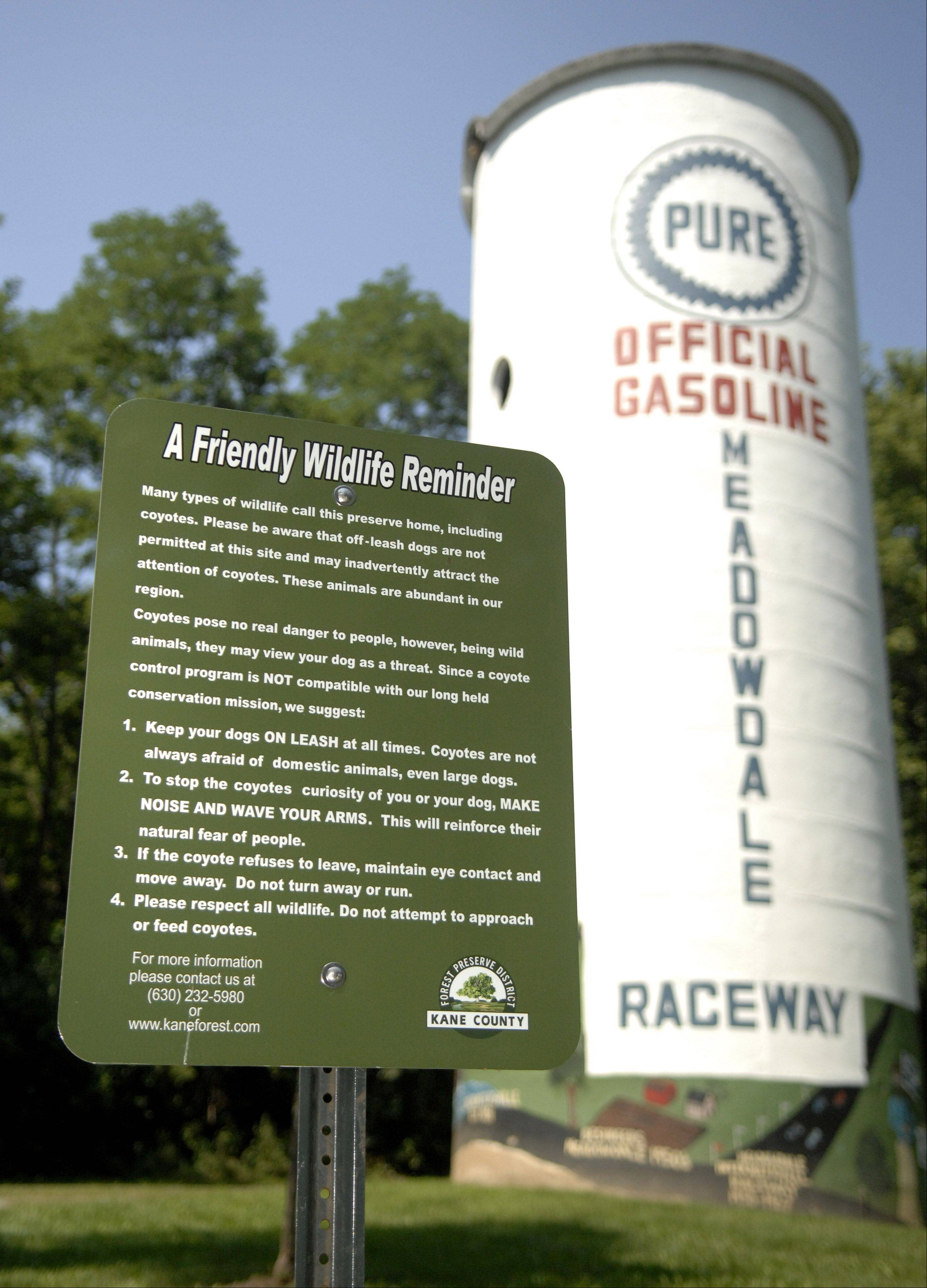 Some coyotes have been following people with dogs at Raceway Woods in Carpentersville. The Kane County Forest Preserve has posted two signs on the property alerting visitors how to act and what to do in case they encounter one.
