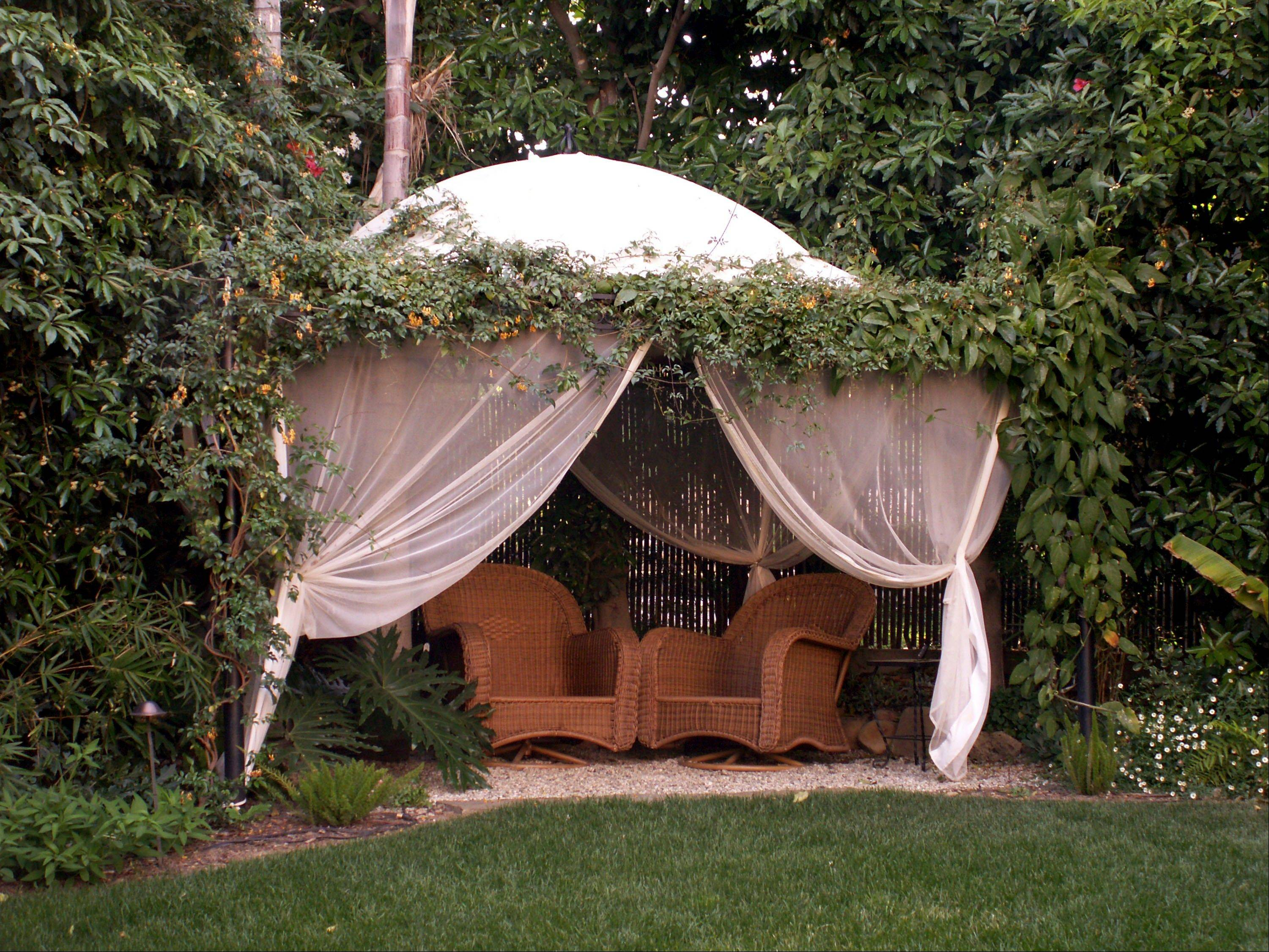 Landscape designers reveal the creative ways they can make an area of privacy in your yard.