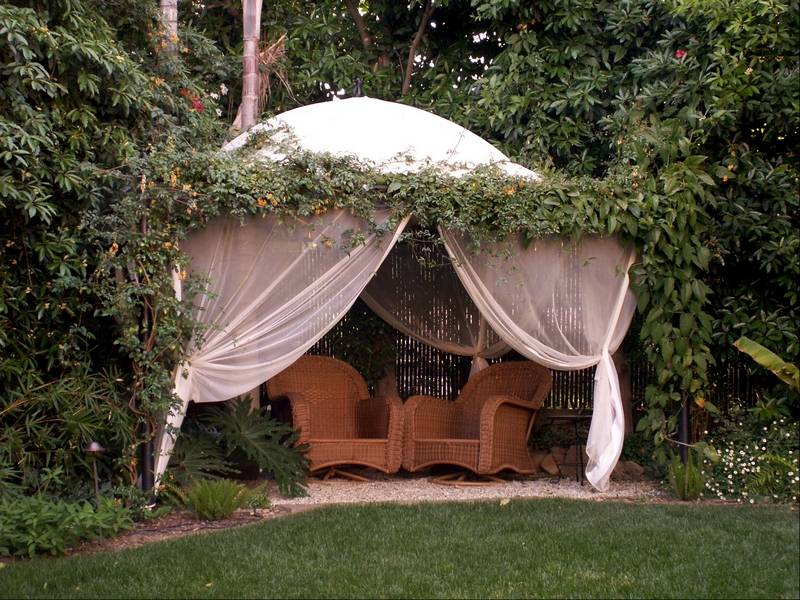 Landscape designers share their tips for creating privacy - Creating privacy in backyard ...