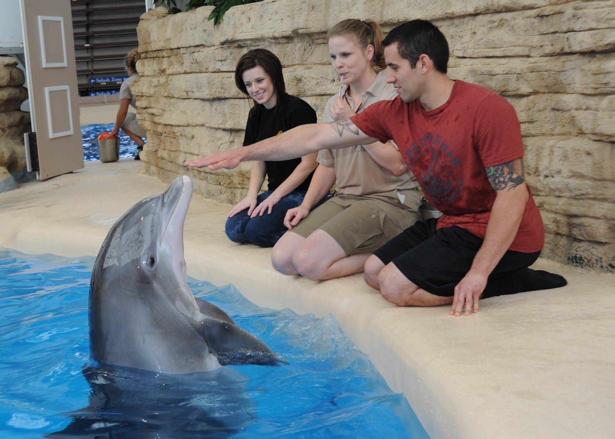 "Two participants in the ""Flippered Friends"" session at Brookfield Zoo assist in instructing a bottlenose dolphin."