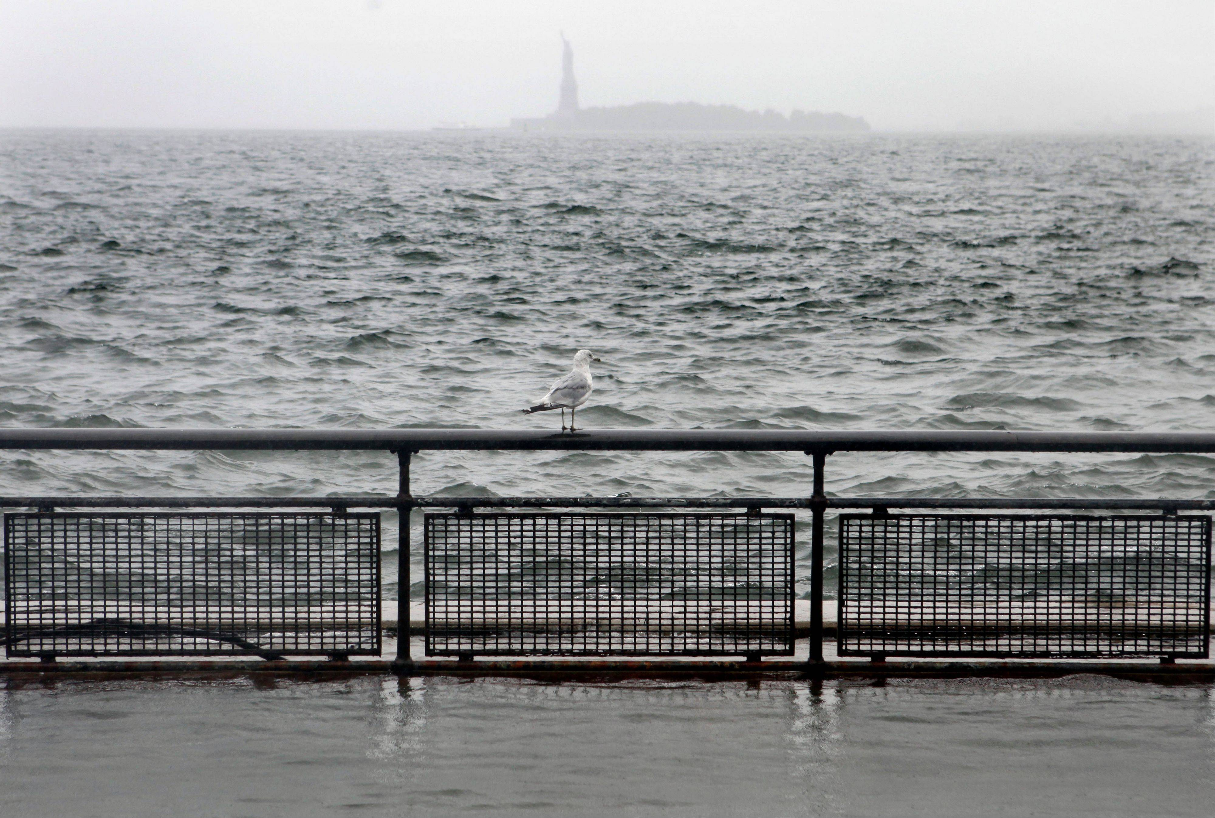A seagull stands atop a railing along the seawall in Battery Park and New York Harbor as Hurricane Irene passes through New York, Sunday, August 28, 2011. Seawater surged into the streets of Manhattan on Sunday as Tropical Storm Irene slammed into New York, downgraded from a hurricane but still unleashing furious wind and rain. The flooding threatened Wall Street and the heart of the global financial network.
