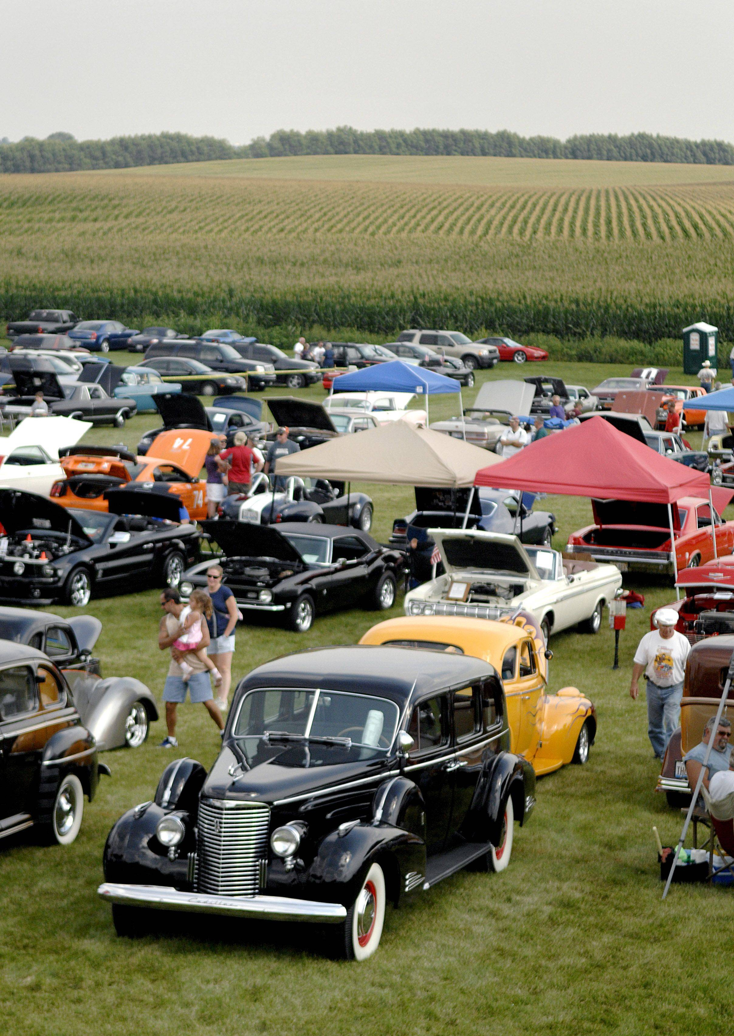 Classic and antique cars of all makes and models sit on display near a cornfield for Kane County Sheriff Pat Perez's third annual car and motorcycle show fundraiser, which benefited the Figgins Foundation. This year's show, set for Saturday, Sept. 3, will benefit Special Olympics. The event is held at the Martin family farm in Elburn.