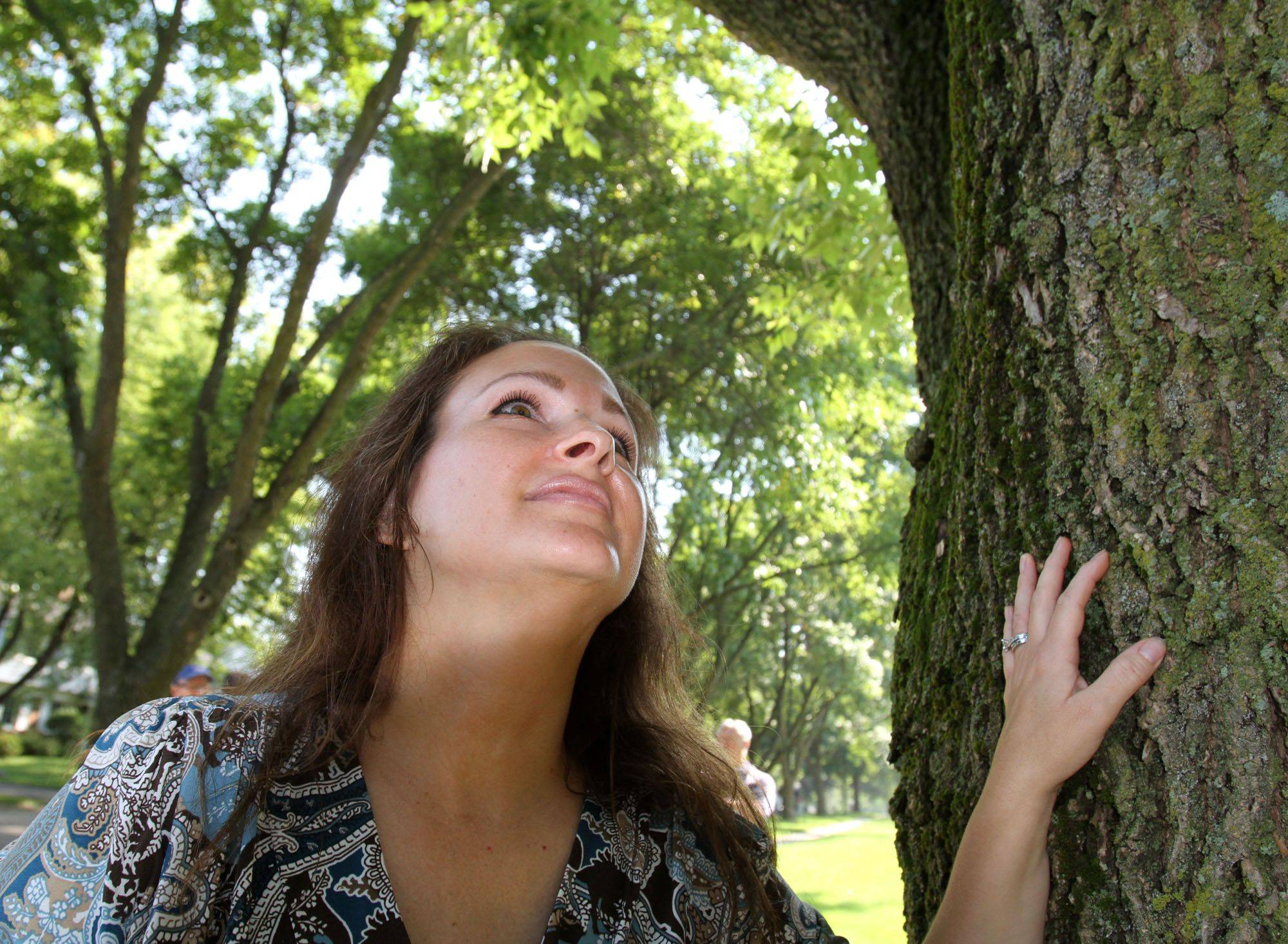 Neighborhood activist Amy Zinga, of Bartlett, looks up at an ash tree being treated for emerald ash borer at Redwood Lane and West Country Road in Bartlett.