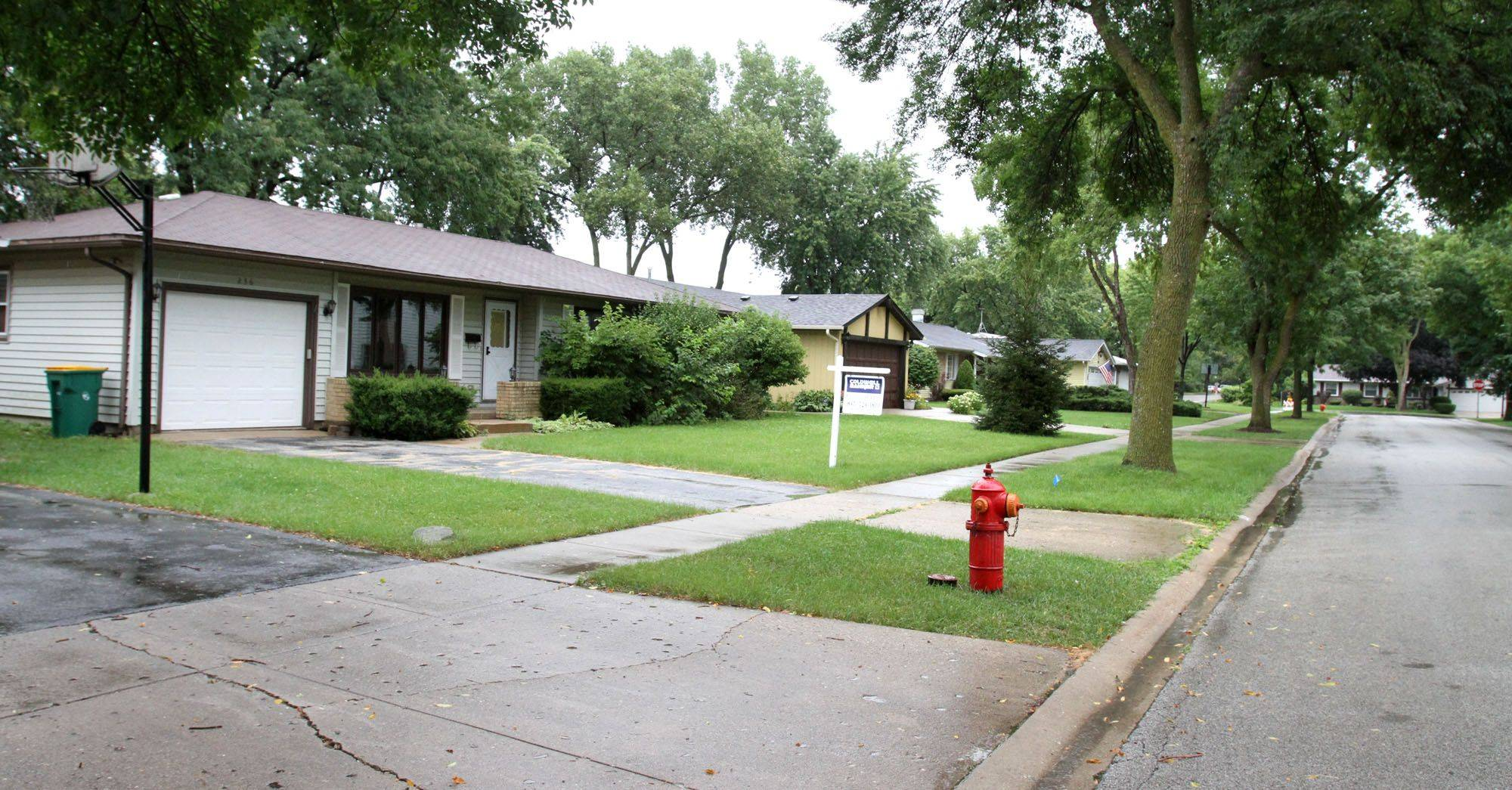 Homes in the Pavilion area of Elk Grove Village, including these along Kingsbridge Road, are typical of the suburban neighborhoods that sprouted up in the 1950s and '60s.