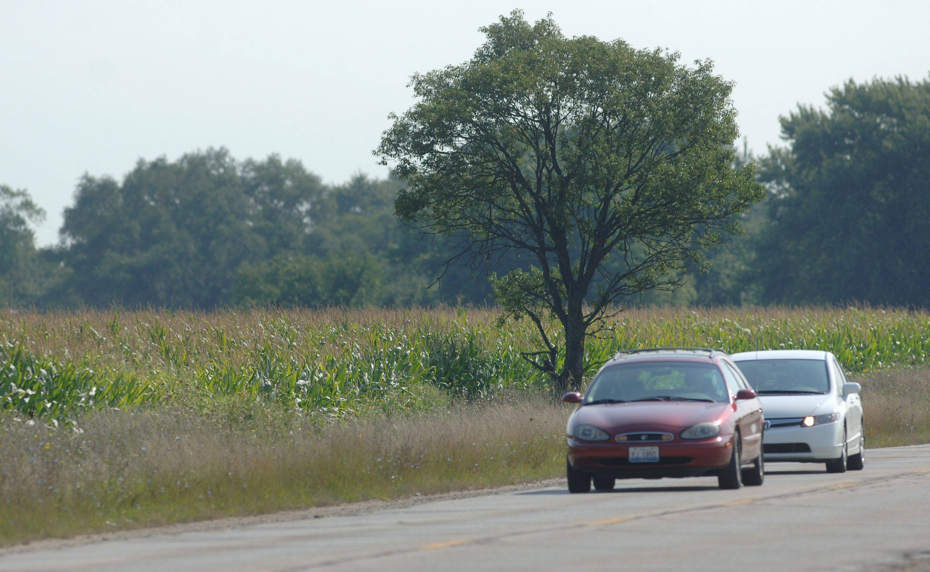The College of Lake County has suggested this farm field north of Center Street and west of Route 45 in Grayslake for a local food learning center. It�s owned by the Lake County Forest Preserve District.