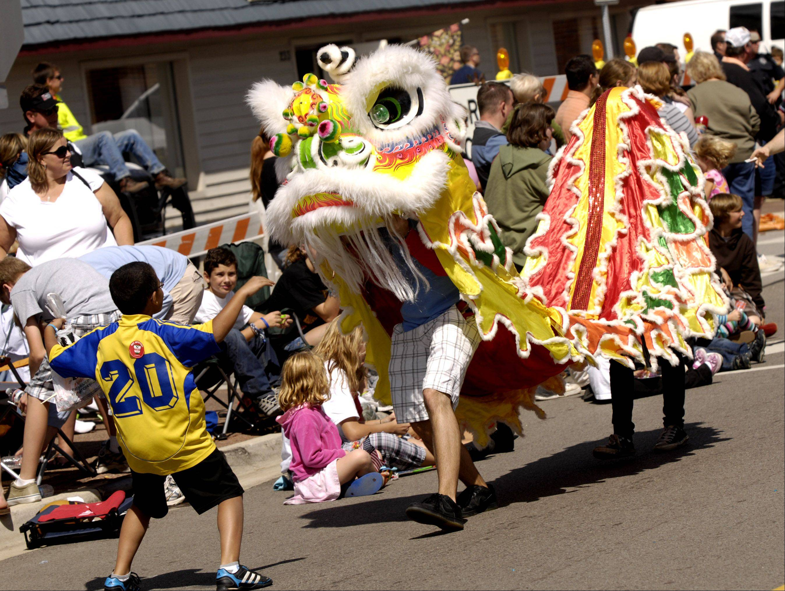 A Chinese dragon closes out the 2011 Naperville Labor Day parade.