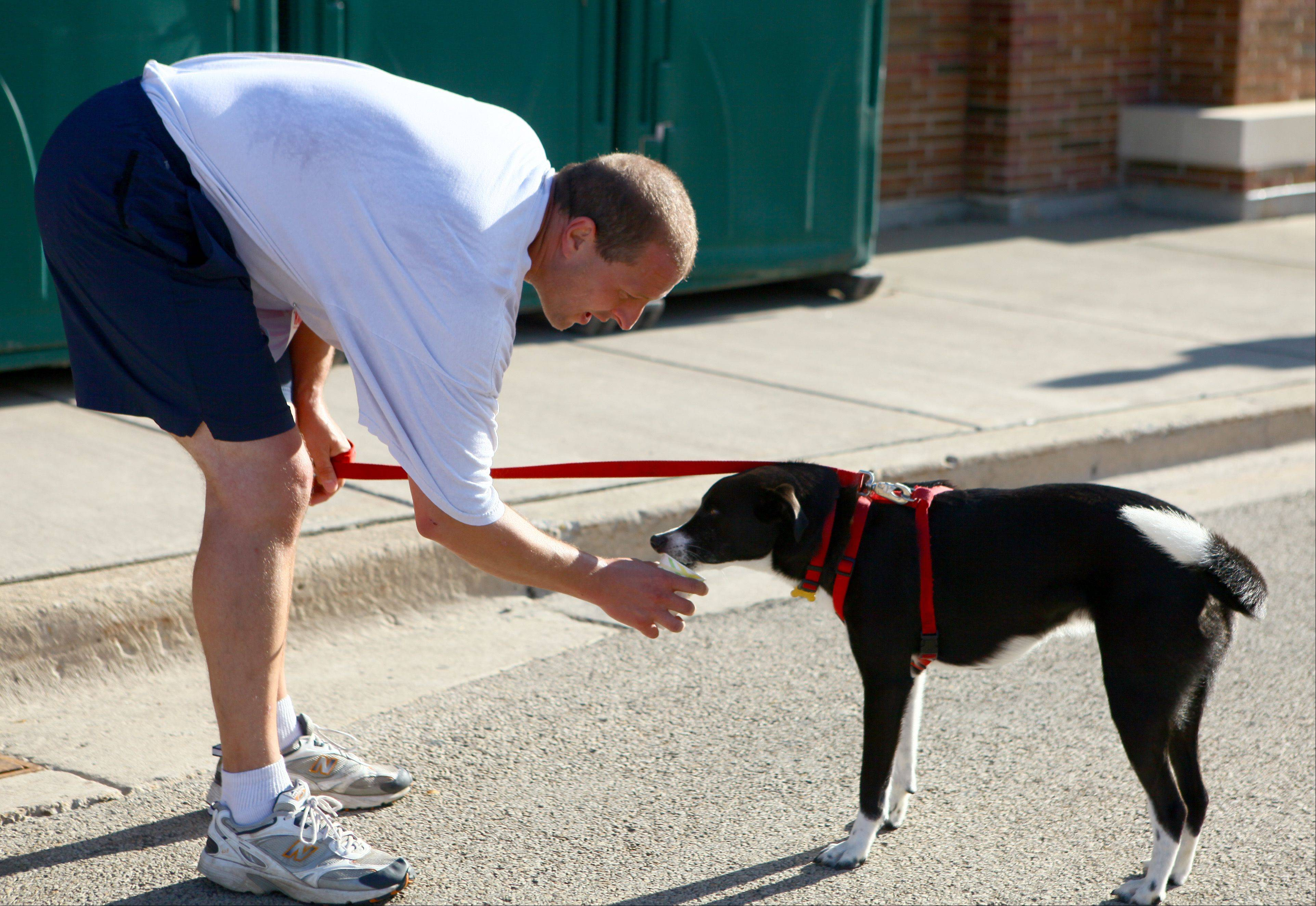 Scott Becker, of Bartlett, gives his short hair border collie, Wishbone, a drink of water after running half of his 10K at the Bartlett Lion�s Labor Day Dash Sunday. Nearly 300 people participated in the 5K, 10K, and kids and family fun dash.