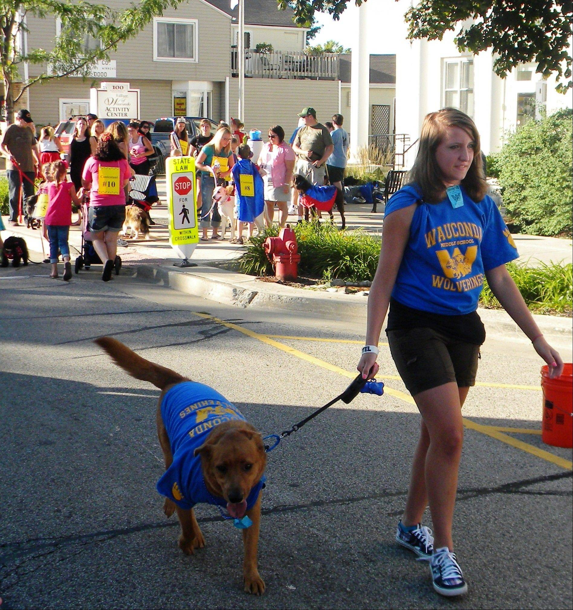 "Wrigley and owner Deby Dato show off their school spirit at the Wauconda Area Chamber of Commerce's ""Back to Drool"" pet parade."