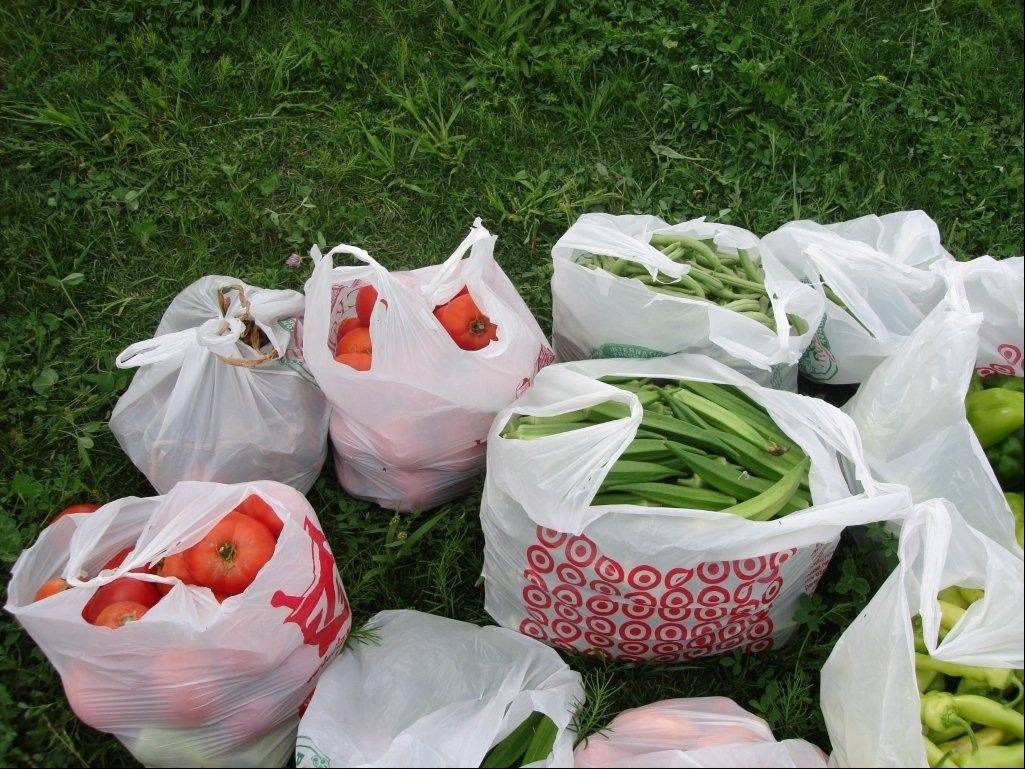 Some of the 300 pounds of produce contributed to Loaves & Fishes food pantry in Naperville from the University of Illinois Extension Service in DuPage County.
