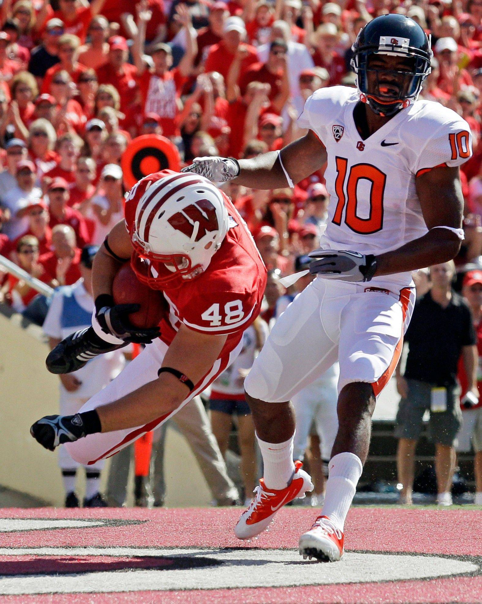 Wisconsin's Jacob Pedersen catches a touchdown pass in front of Oregon State's Lance Mitchell during the first half Saturday in Madison. Wisconsin beat Oregon State 35-0.