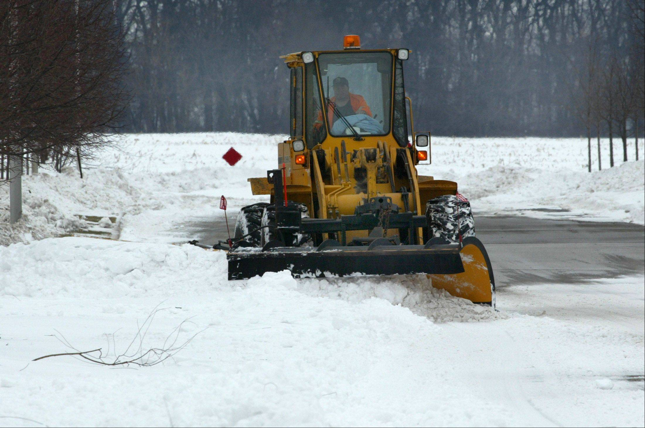 Elgin's budget and financial planning task force is recommending Elgin cut back on snow removal and leaf pickup.