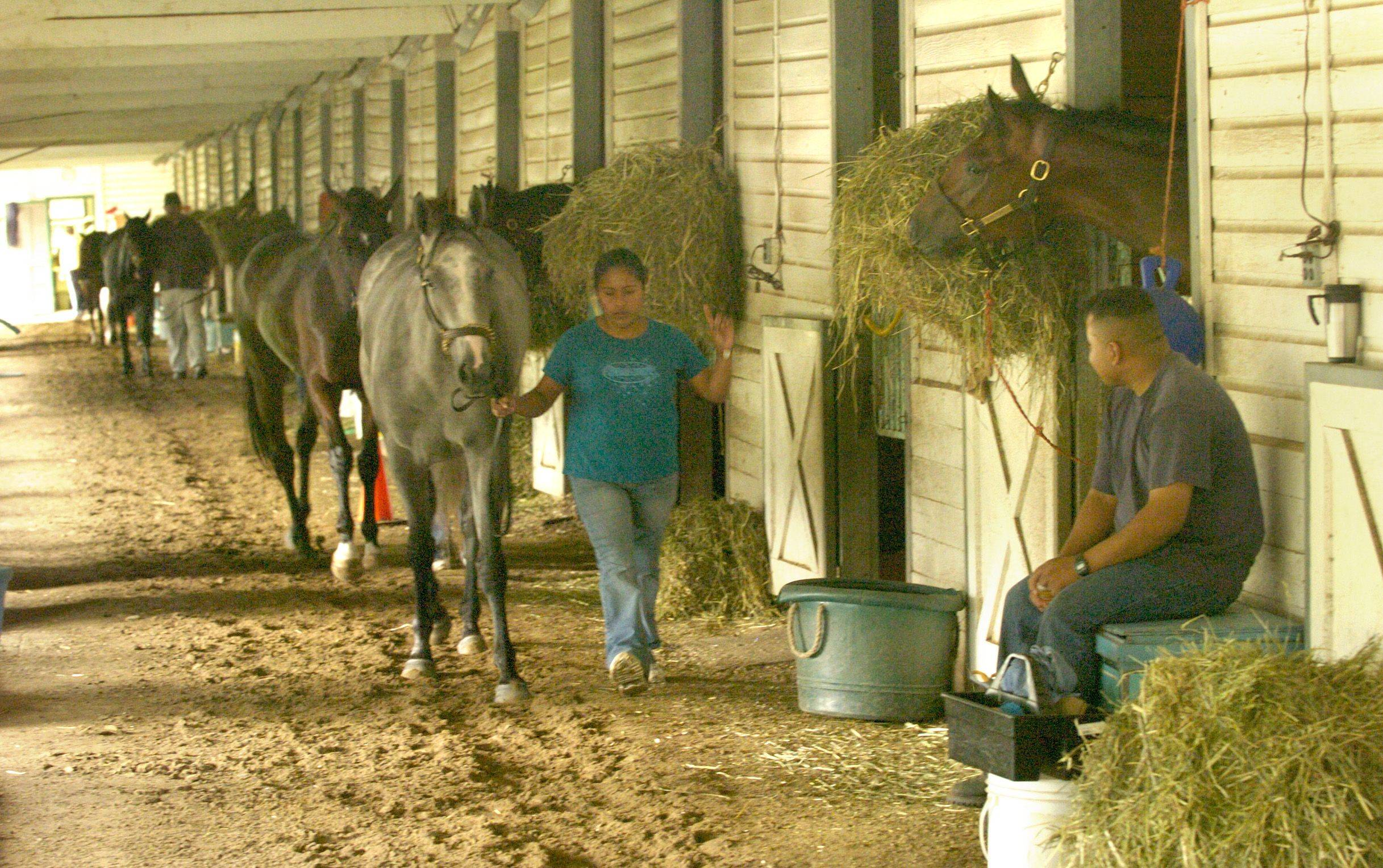 Backstretch workers at Arlington Park don't know what their future holds as business continues to decline at the racetrack.