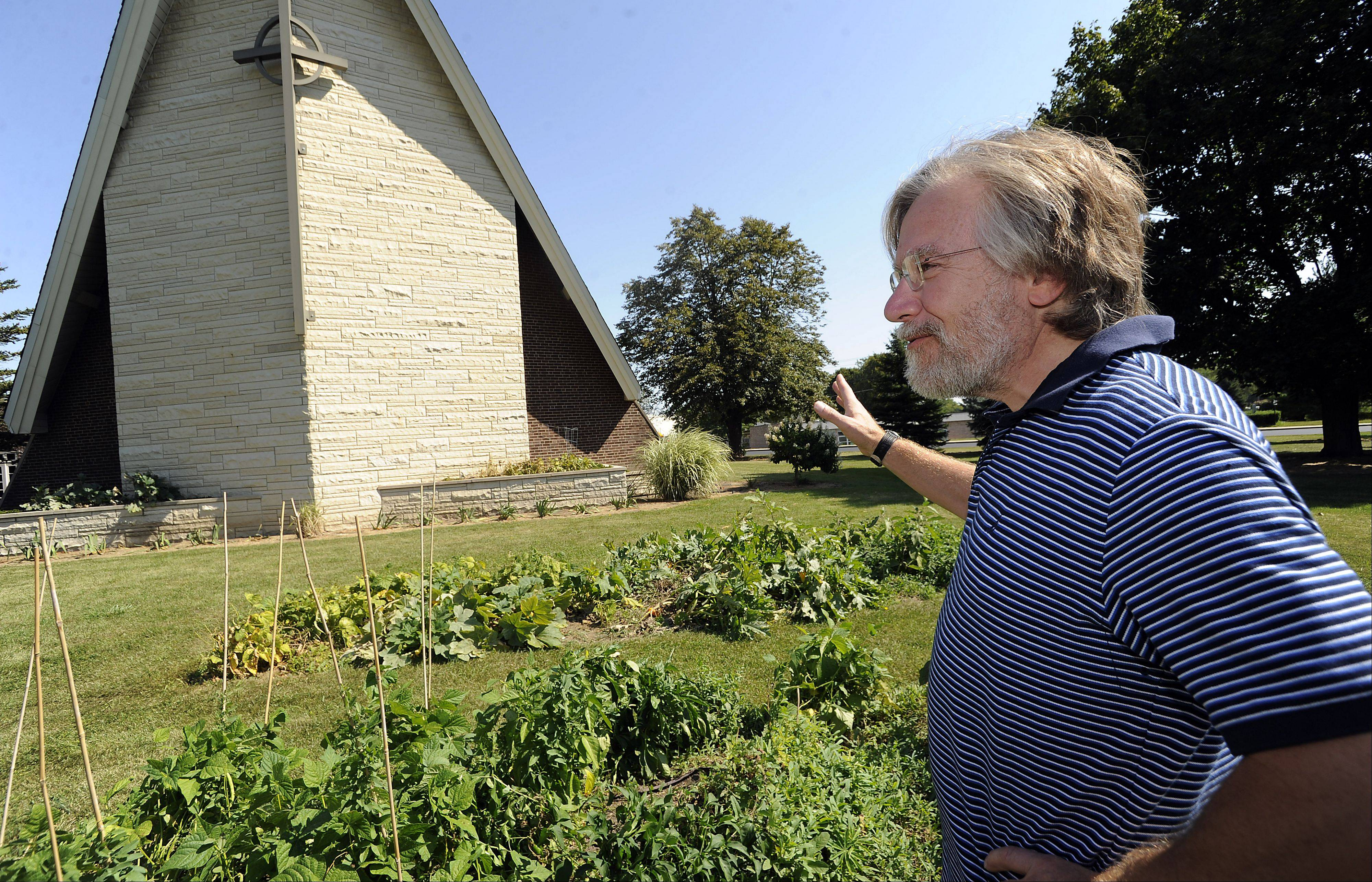 Mark Hamlen of Presbyterian Church of Palatine looks over his garden that has been fruitful and multiplied many times over to bear harvest to support Giving Garden.