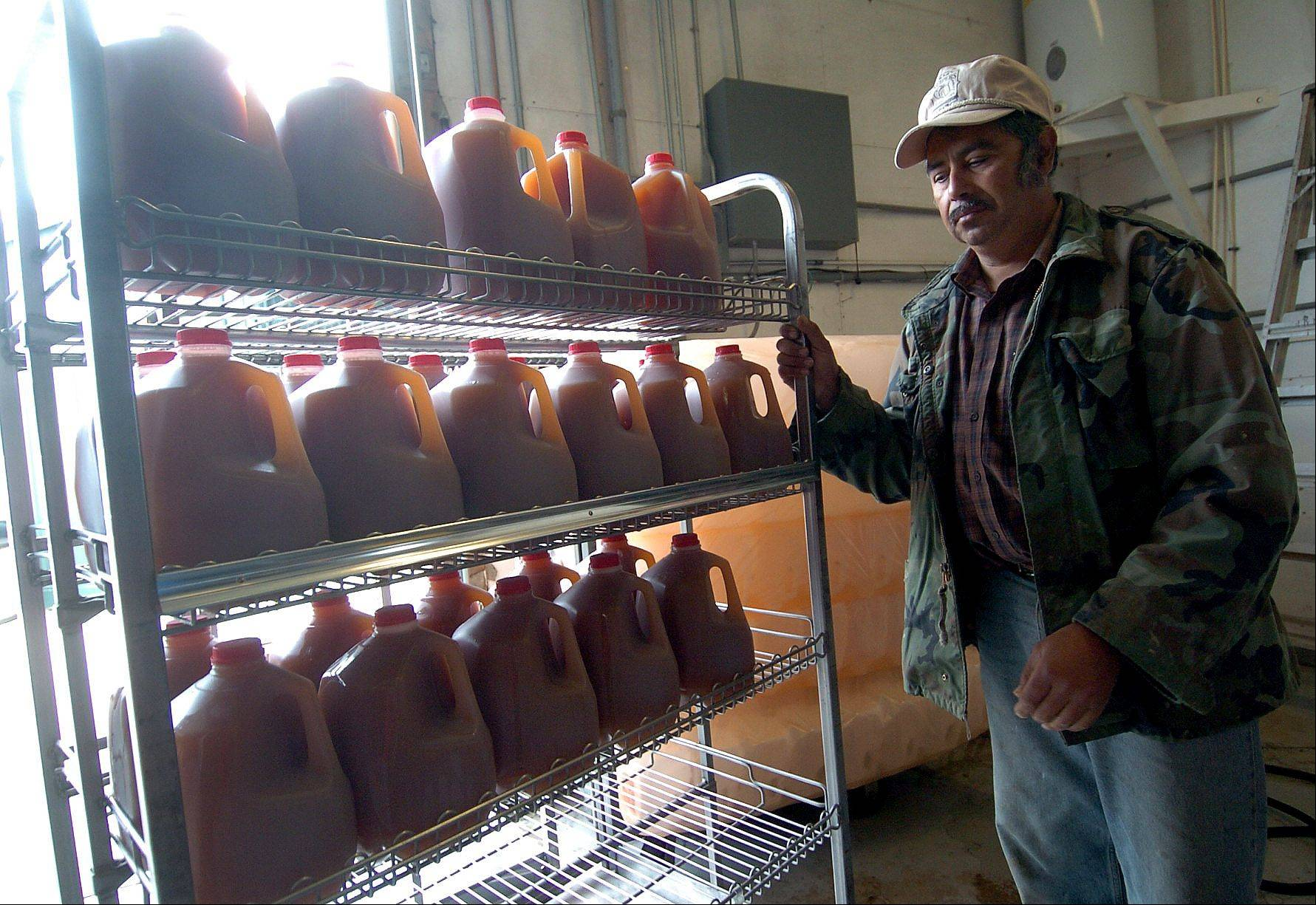 Manuel Rivera fills a rack of freshly bottled apple cider to be sold in the store.