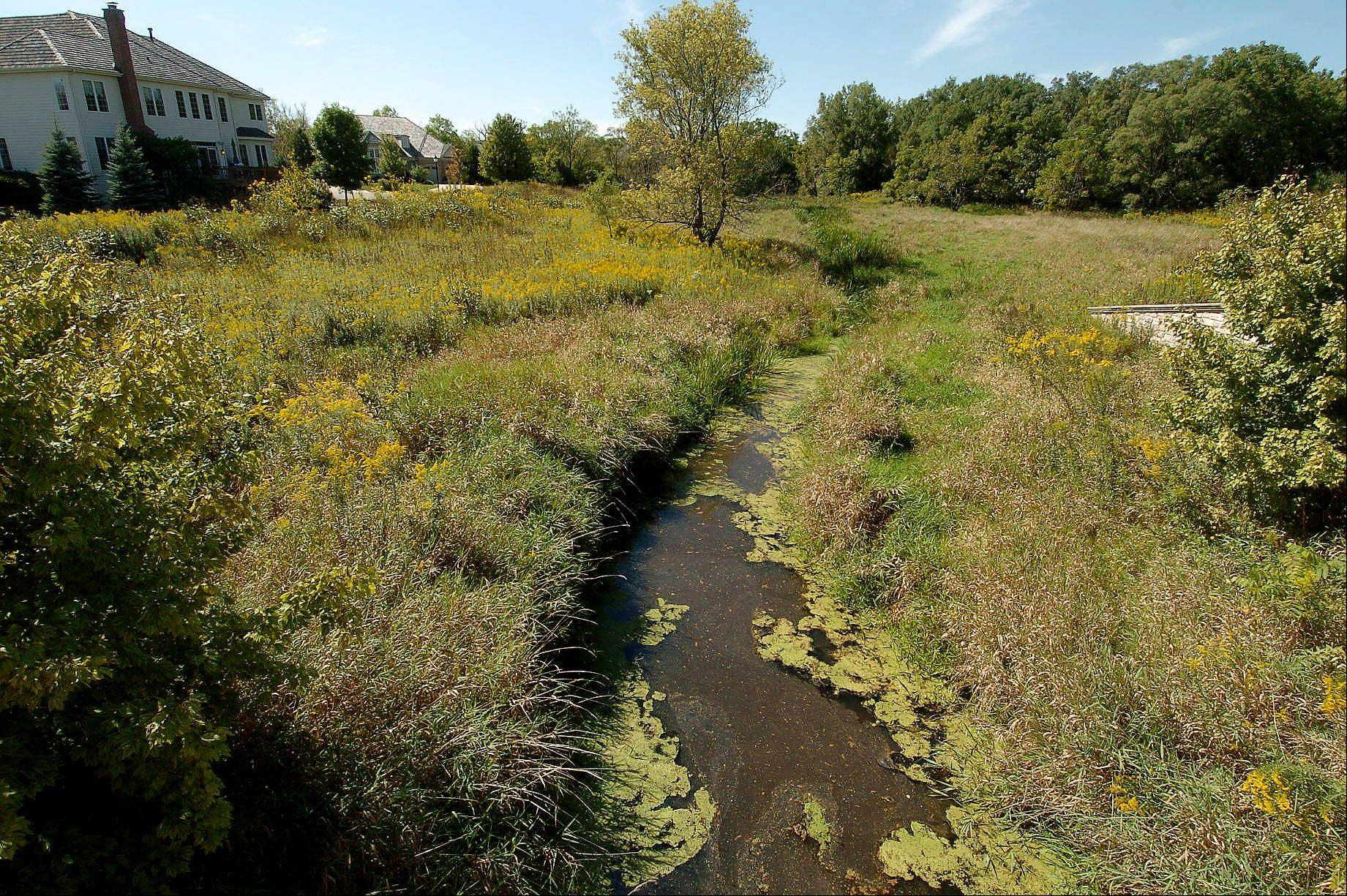The conservancy areas at the Estates of Inverness Ridge include Poplar Creek and a small tributary.