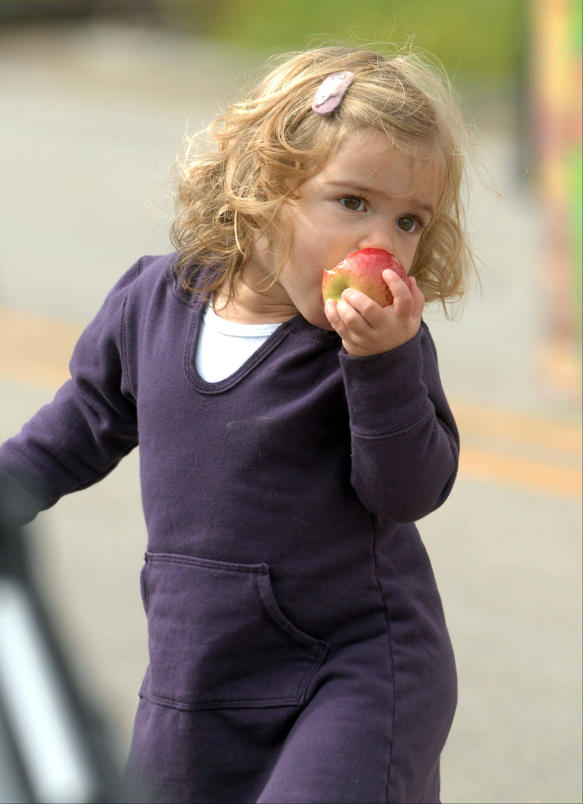 Gemma Marinello, 21 months of Chicago, enjoys an apple her mother, Erica Marinello, bought for her Friday.