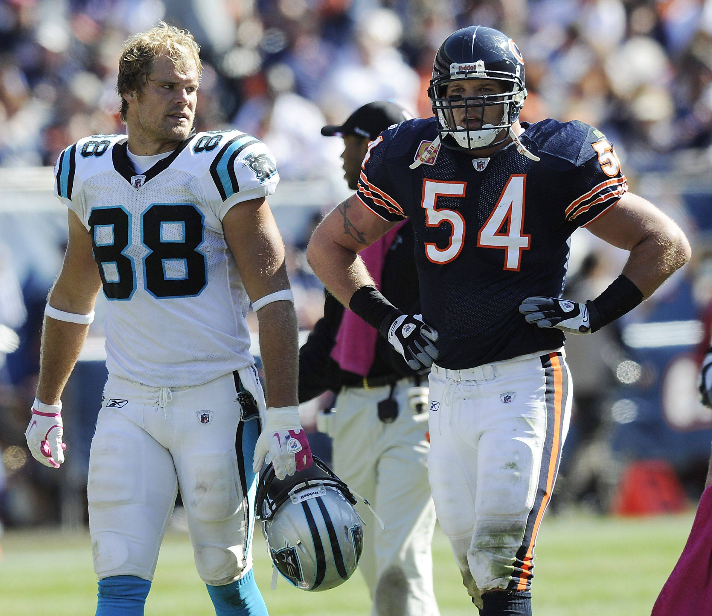 Panthers Greg Olsen and Bears Brian Urlacher walk together as the 4th quarter begins.