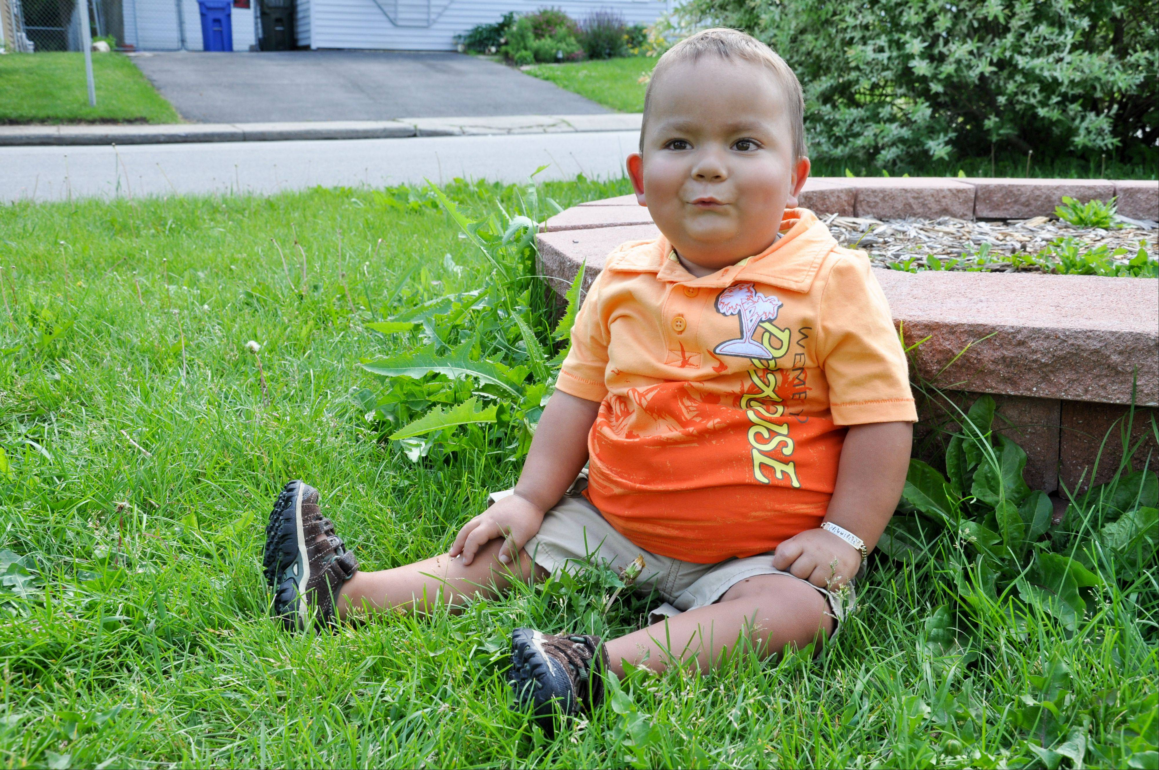Nathan Saavedra, the 2-year-old Carpentersville boy who needs a kidney.