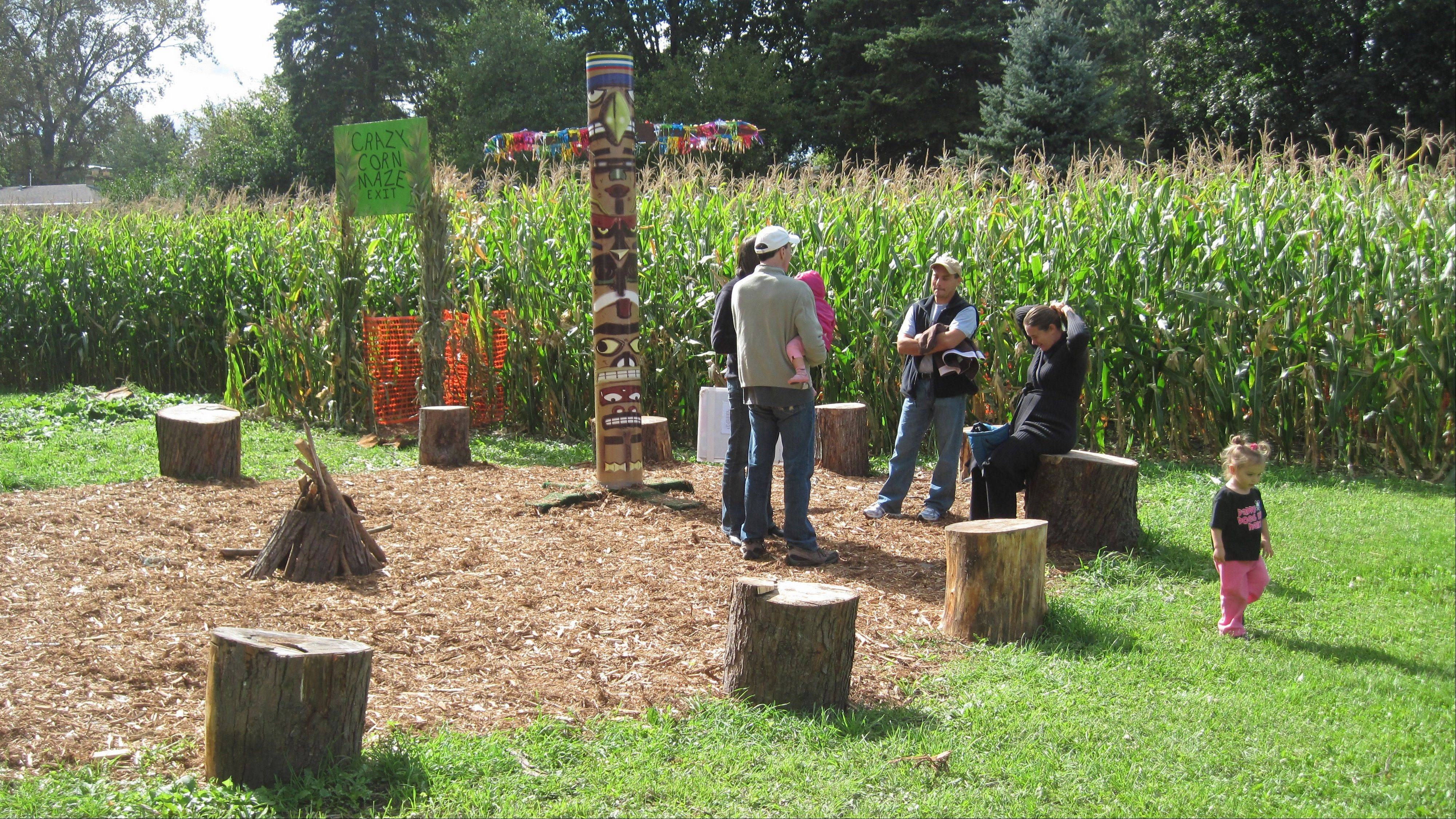 Visitors to Autumn Fun Fest at Kinsch Village Florist await their turn in the corn maze.