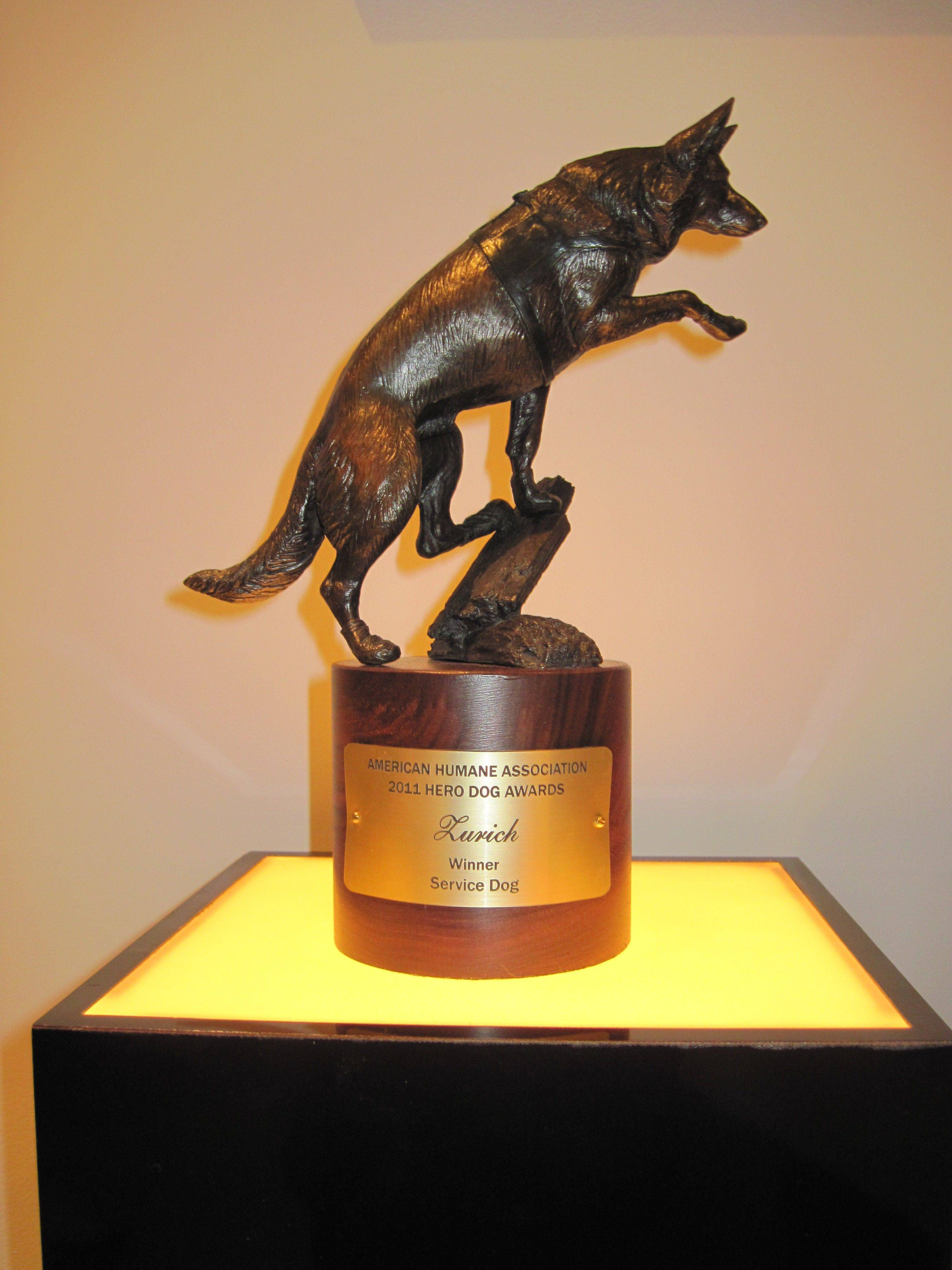 This nearly foot-high brass dog statuette was awarded to Des Plaines service dog, Zurich, a 9-year-old yellow Labrador retriever, as a trophy for being one of eight finalists in the first American Humane Association Hero Dog Awards.