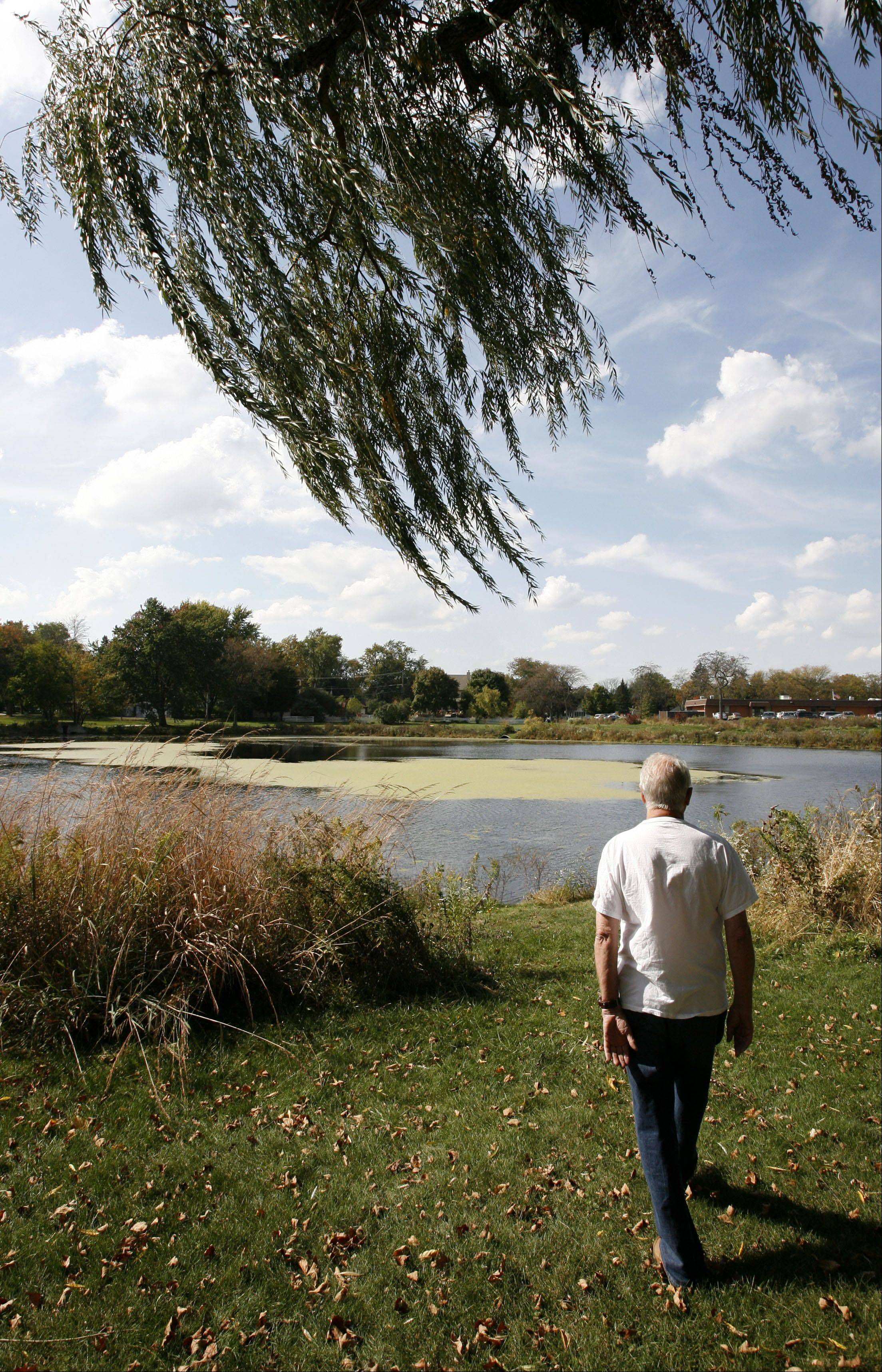 Donald Easterbrook of Lombard said he enjoys walking around Terrace View Pond in Lombard and doesn't want stormwater improvements being considered to harm the park's environment.
