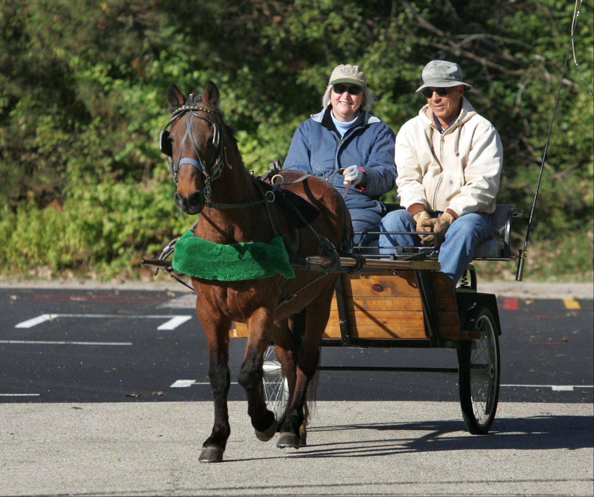 "Sue and Ron Herbes of Libertyville go out for a ride in an easy-in cart pulled by Spirit Monday along Buckley Road in Libertyville. ""Spirit is a Hackney pony and we call her our green transportation,"" said Ron."