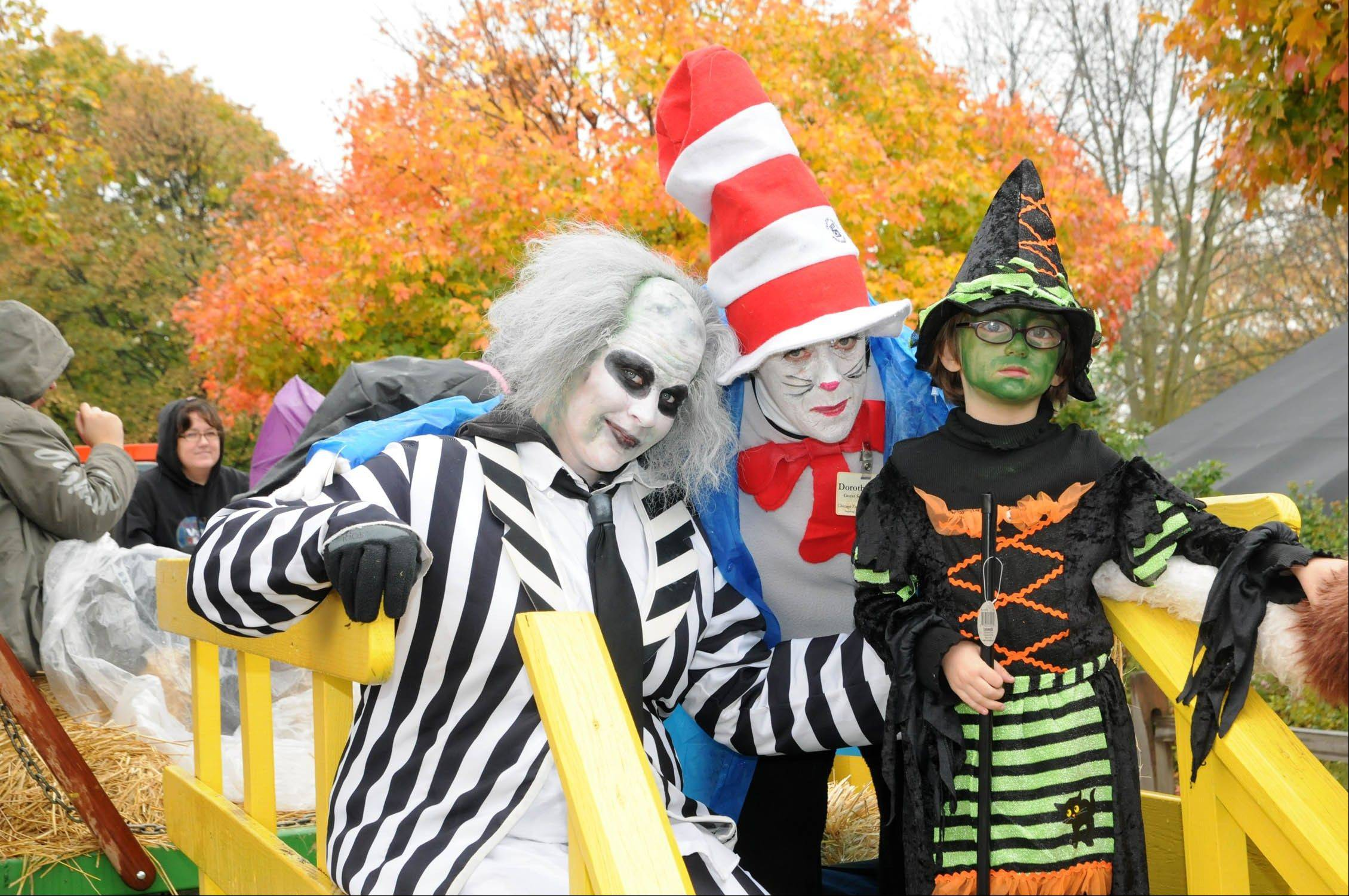 A costume contest is part of Brookfield Zoo's not-so-scary celebration Boo! at the Zoo.