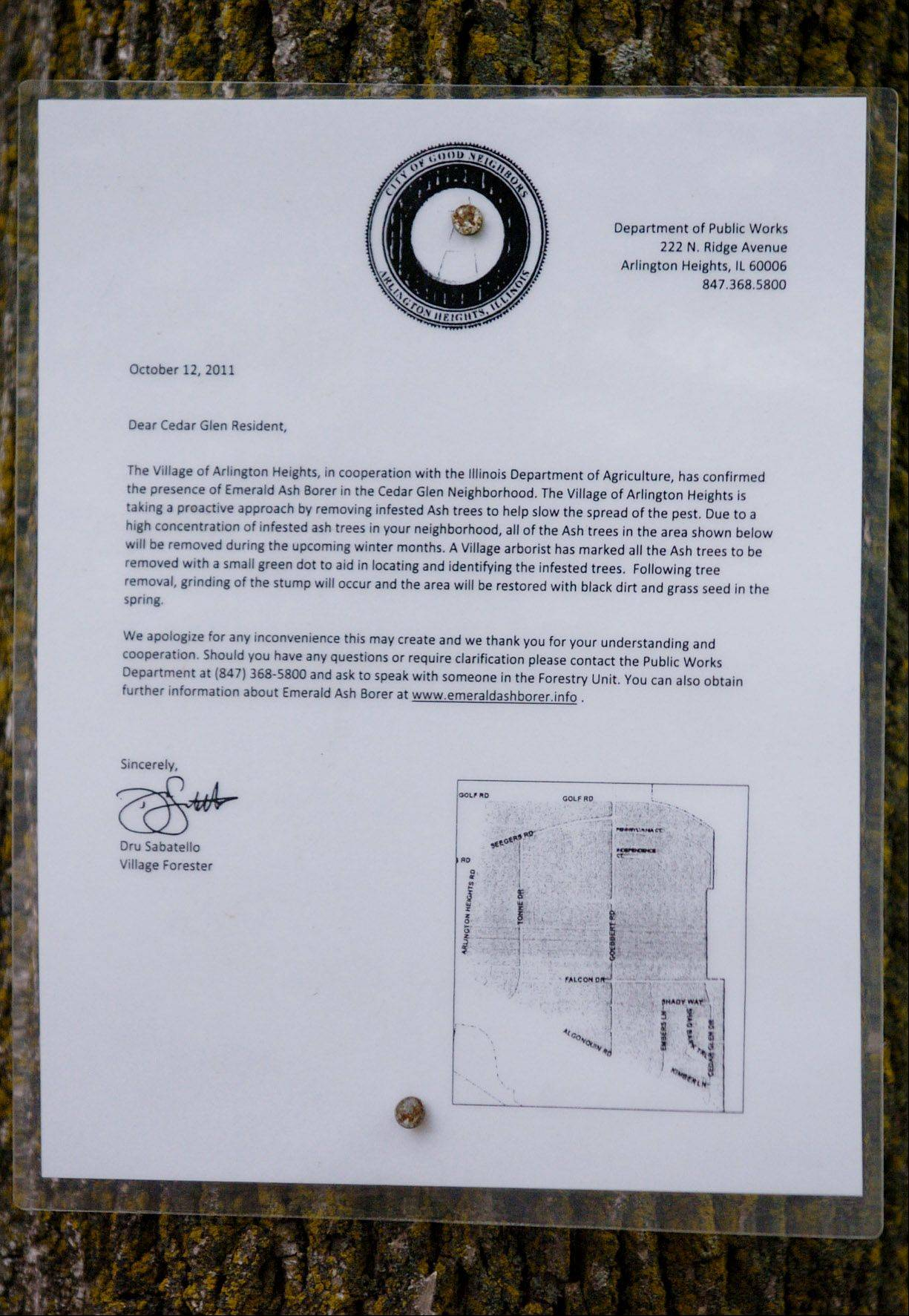 A posted notice by the Village of Arlington Heights, on a tree outside Cedar Glen Condominiums, explains that trees marked with a green dot in will be cut down because of infestation by the emerald ash borer.