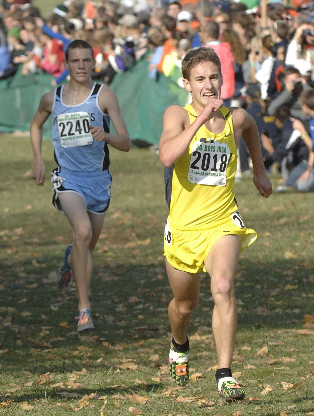Neuqua Valley's Taylor Soltys takes 10th place with a time of 14:42 in the 3A state cross country final. Willowbrook's Pat Niyork finishes in 12th place.
