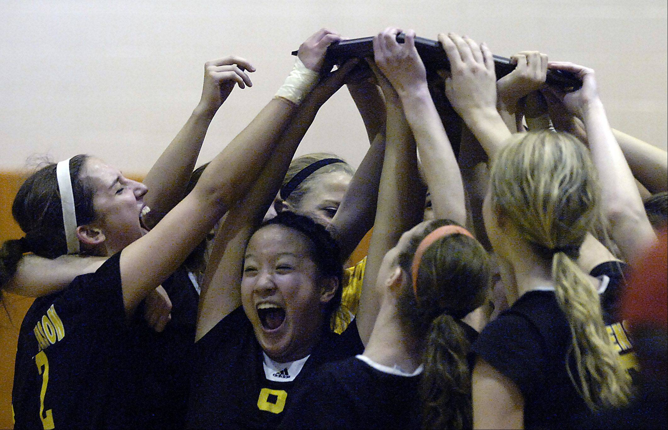 Stevenson's Hannah Kay and her teammates celebrate their victory over Lake Forest in the girls Class 4A volleyball sectional final at Buffalo Grove High School on Thursday.