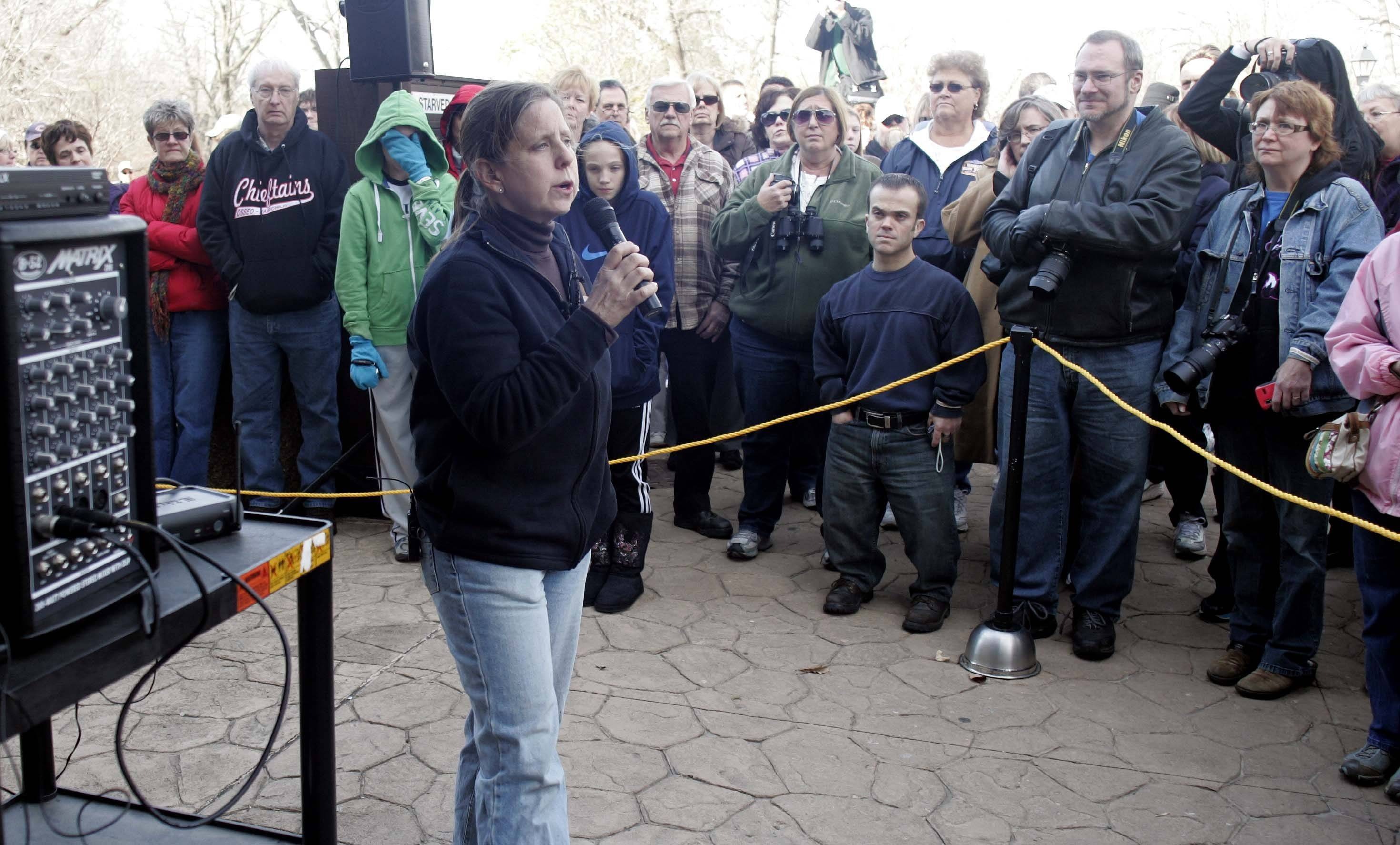 Dawn Keller, founder and director of Flint Creek Wildlife Rehabilitation, talks to the crowd about the two eagles before releasing them Saturday, November 12, 2011 at Starved Rock State Park Utica. The birds were rescued from a fallen nest at Mooseheart.