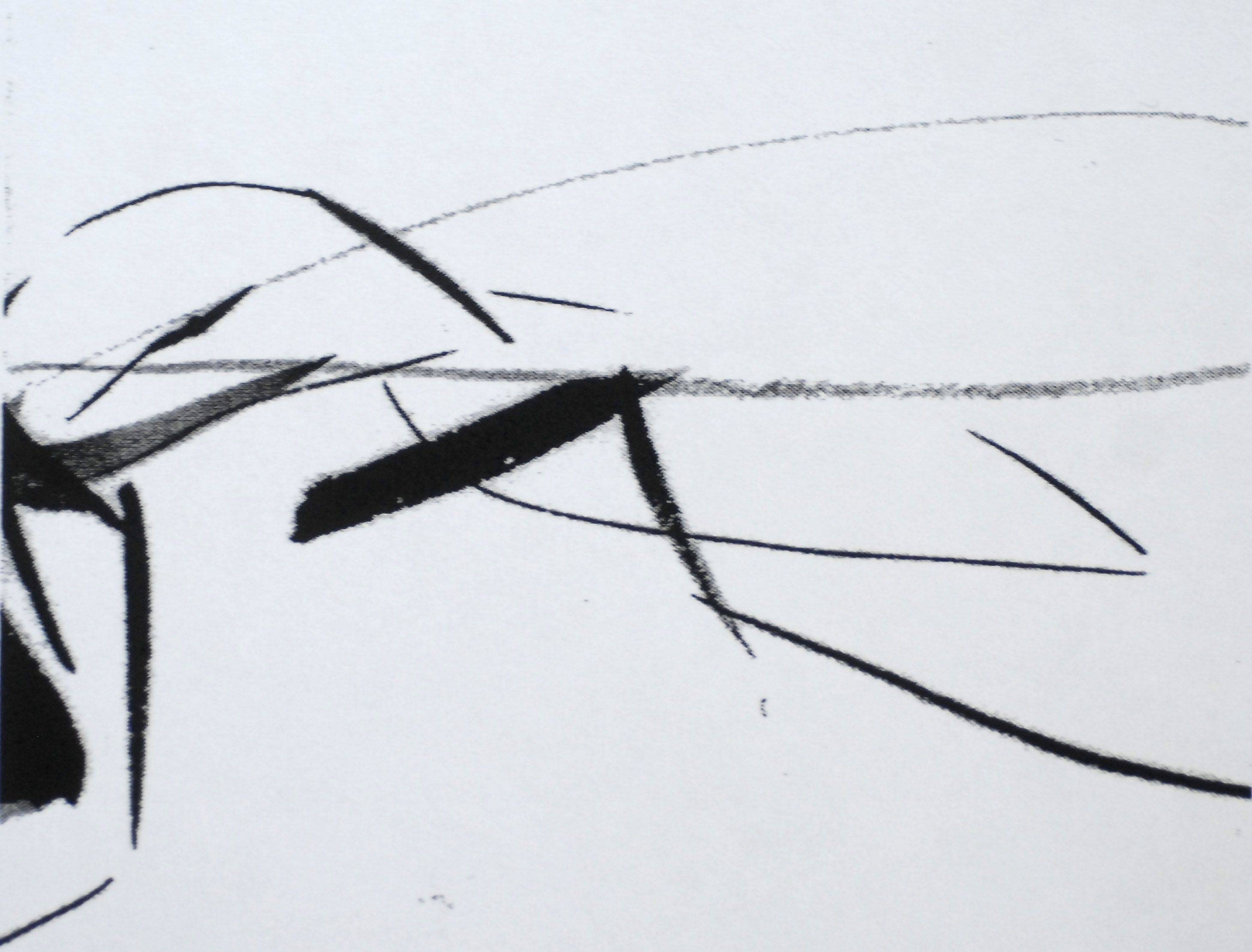 Artist Michael Hopkins of Arlington Heights is getting this drawing from his insect series admitted to the world-renowned Glore Print Study Room in The Jean and Steven Goldman Study Center permanent collection at the Art Institute of Chicago.