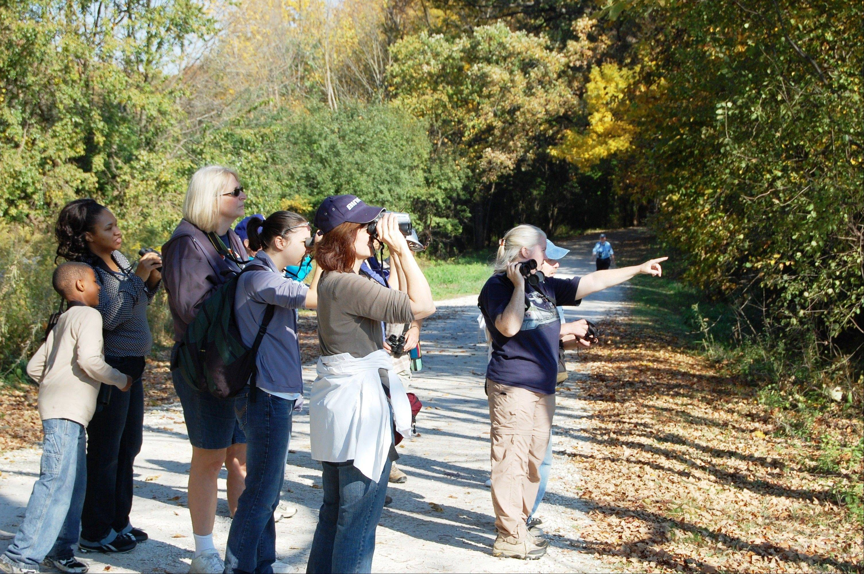 An early October walk at St. James Farm produced 42 species. Notable sightings included pied-billed grebe, wood duck, broad-winged hawk, brown creeper, five kinds of woodpeckers and numerous yellow-rumped warblers.