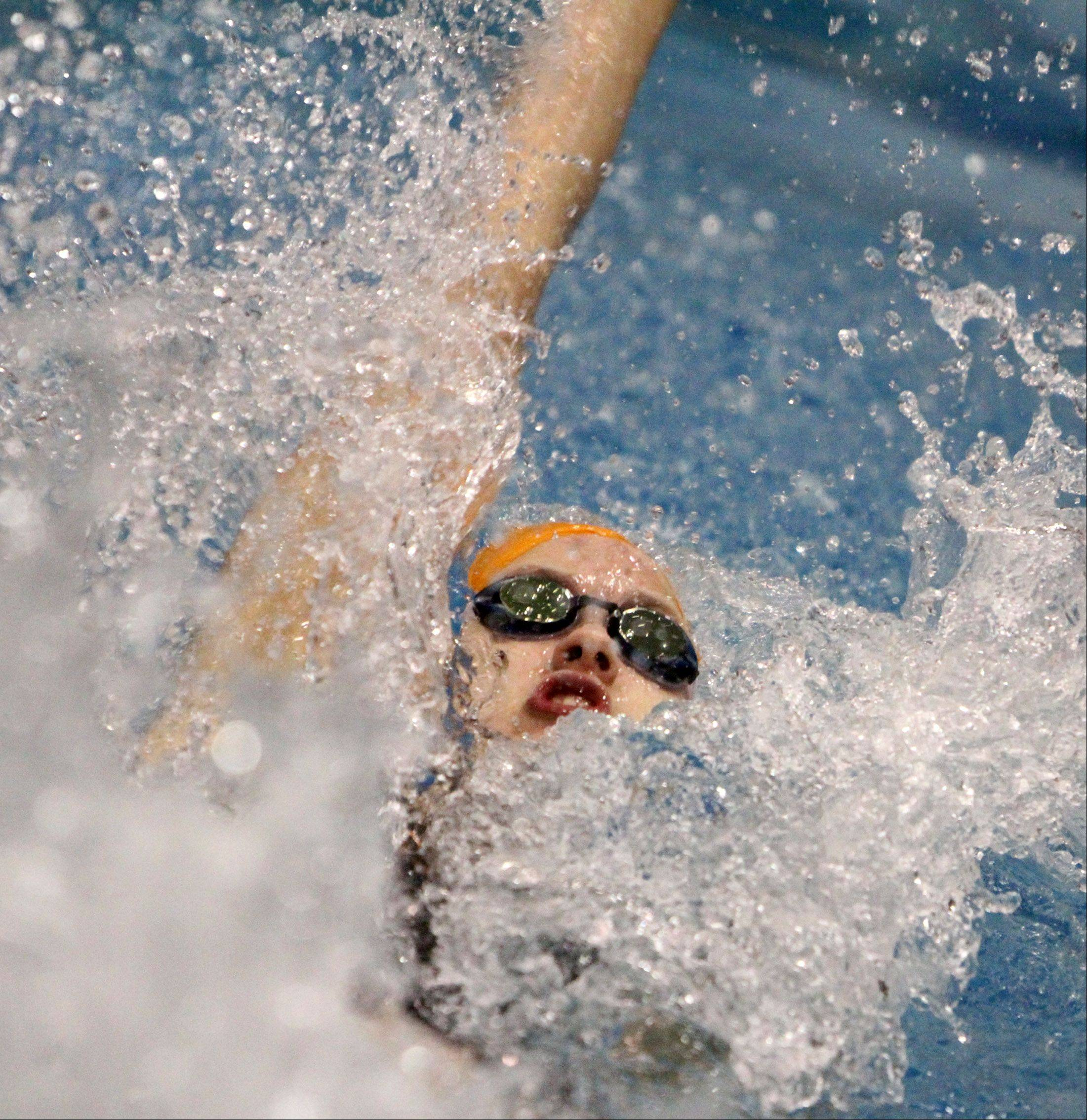 Buffalo Grove's Veronika Jedryka competes in the 100-yard backstroke at the IHSA state final preliminaries in Winnetka on Friday, November 18th.