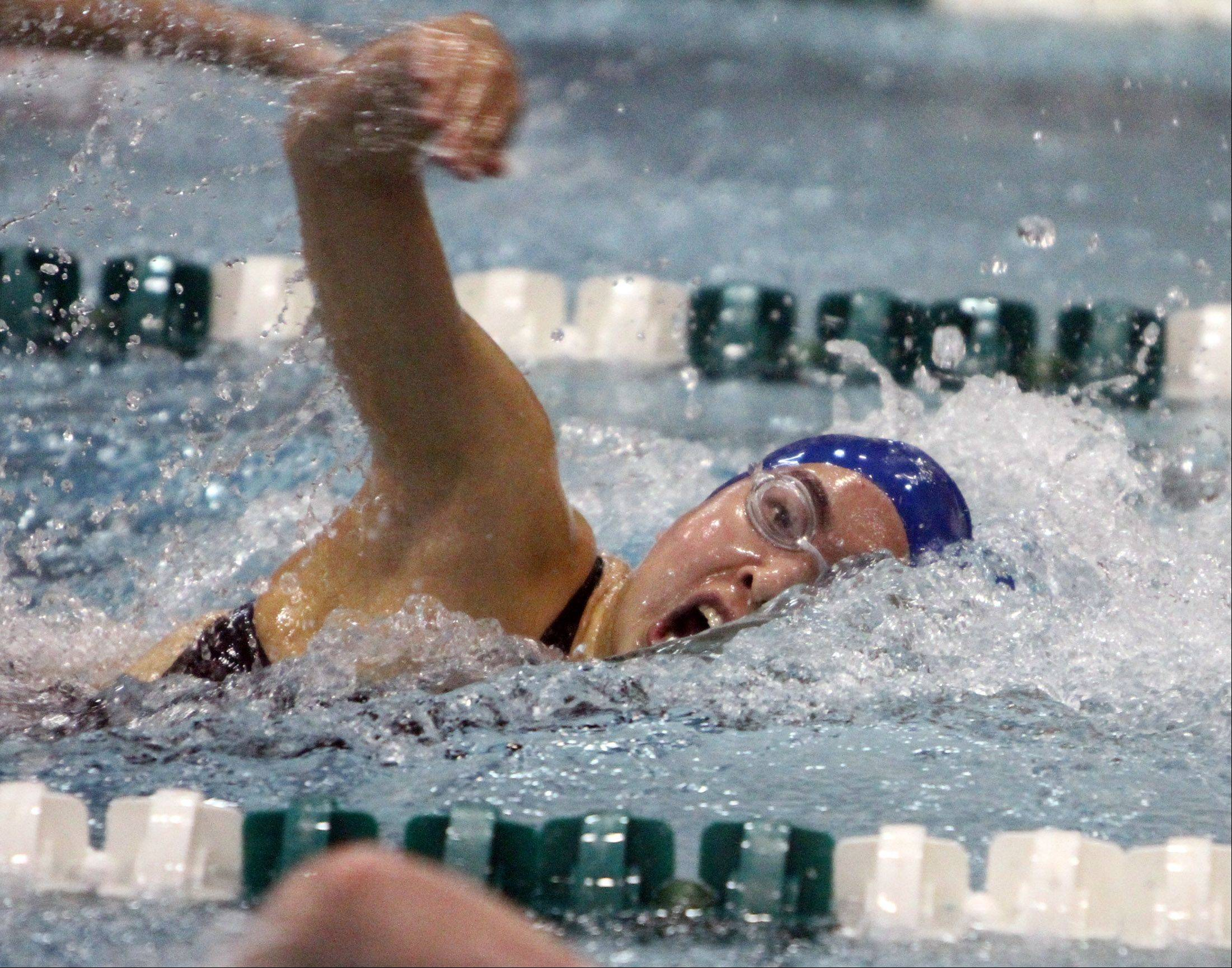 Glenbard West (coop) competes in the 200-yard freestyle at IHSA state final preliminaries in Winnetka on Friday, November 18th.