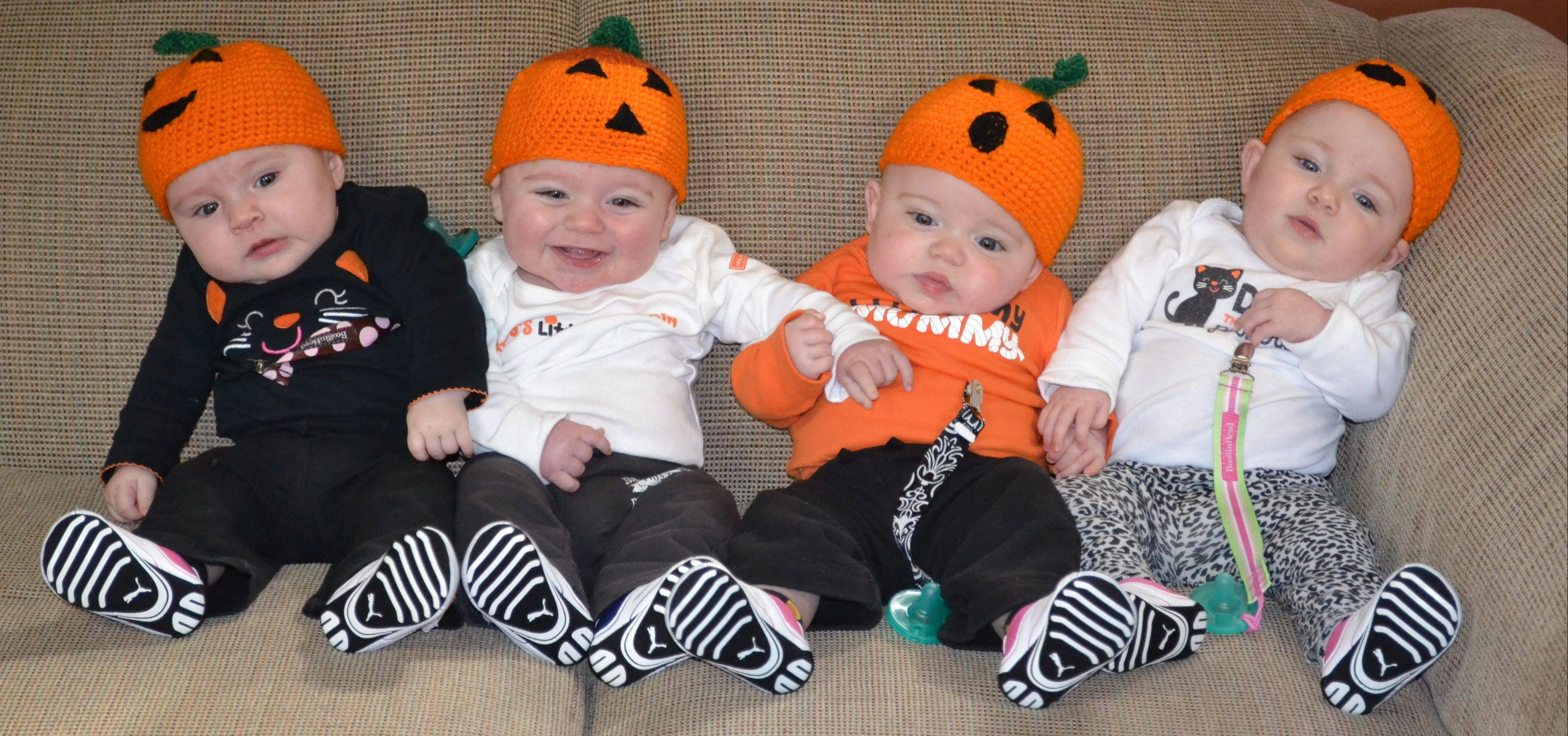 Clare, Landon, Maya and Olivia Fraley in their Halloween outfits. Their parents, Beth and Lane Fraley of Wood Dale, is thankful this year for the doctors, family and friends who guided the first-time parents through the ups and downs of having quadruplets.