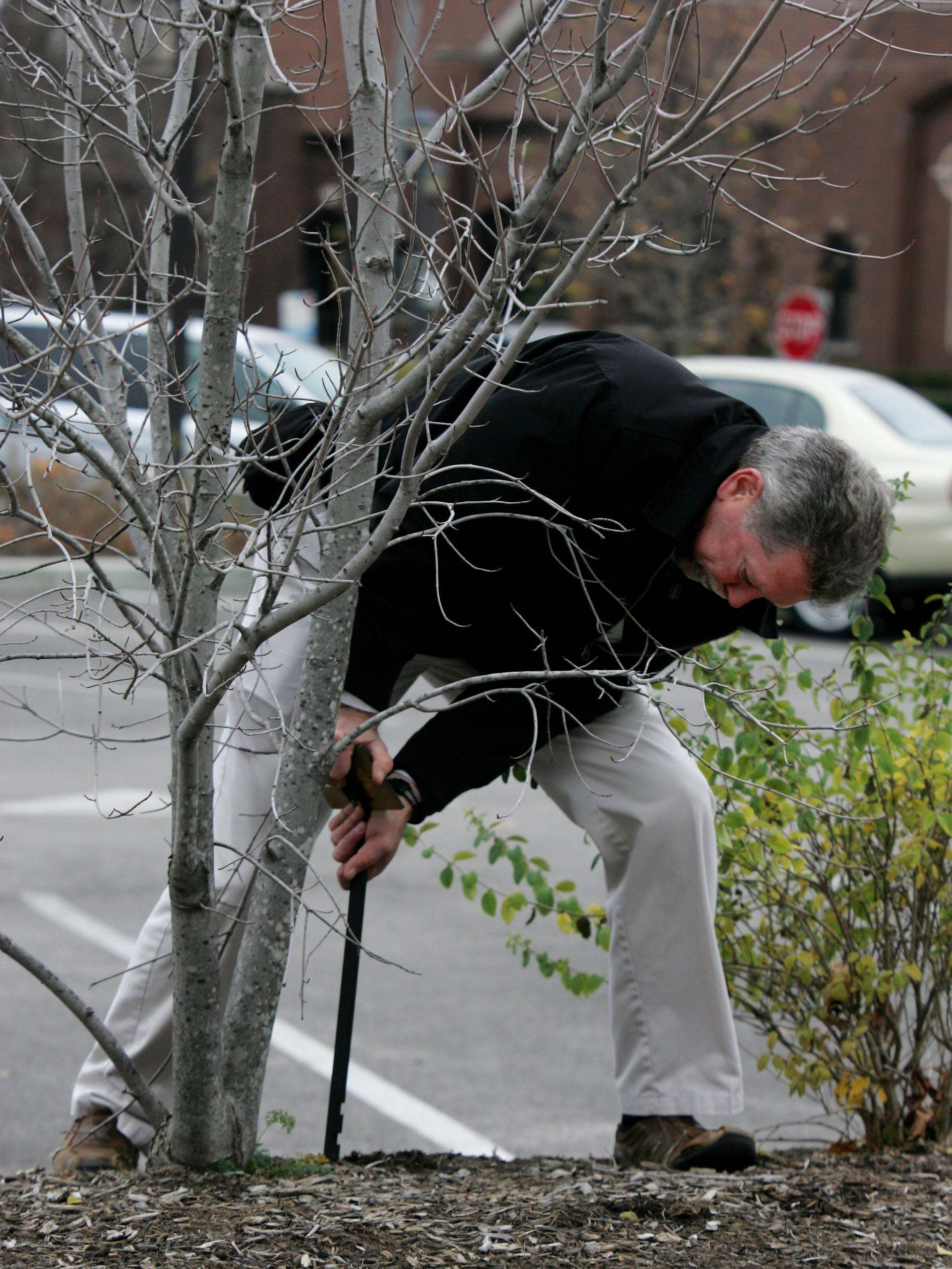 Maintenance manager Gary Murphy installs sponsored plaques at trees outside the Cook Park Library in Libertyville. Library officials are raising revenue by selling naming rights to trees, books, shelves and even rooms.