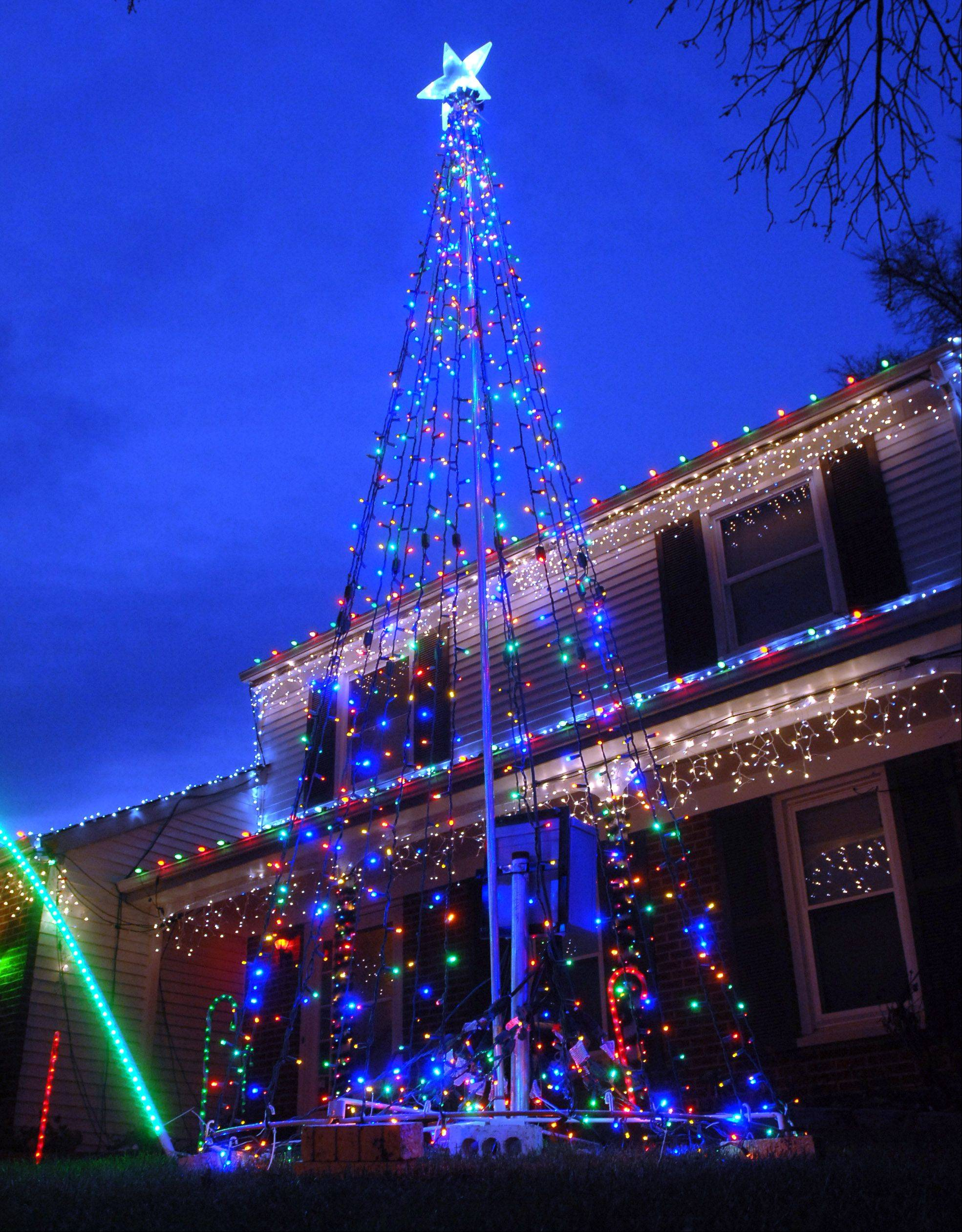 One of the lighted Christmas trees ready for action during the music-synchronized Christmas Light Show.