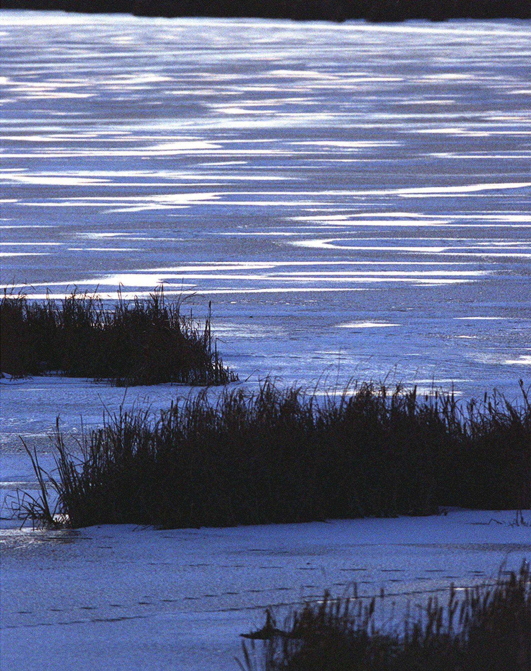 The snow covered ice covering at Nelson Lake Marsh takes on a bluish hue with white highlights as the sun sets on a December evening. Small animal tracks can be seen in bottom of frame.