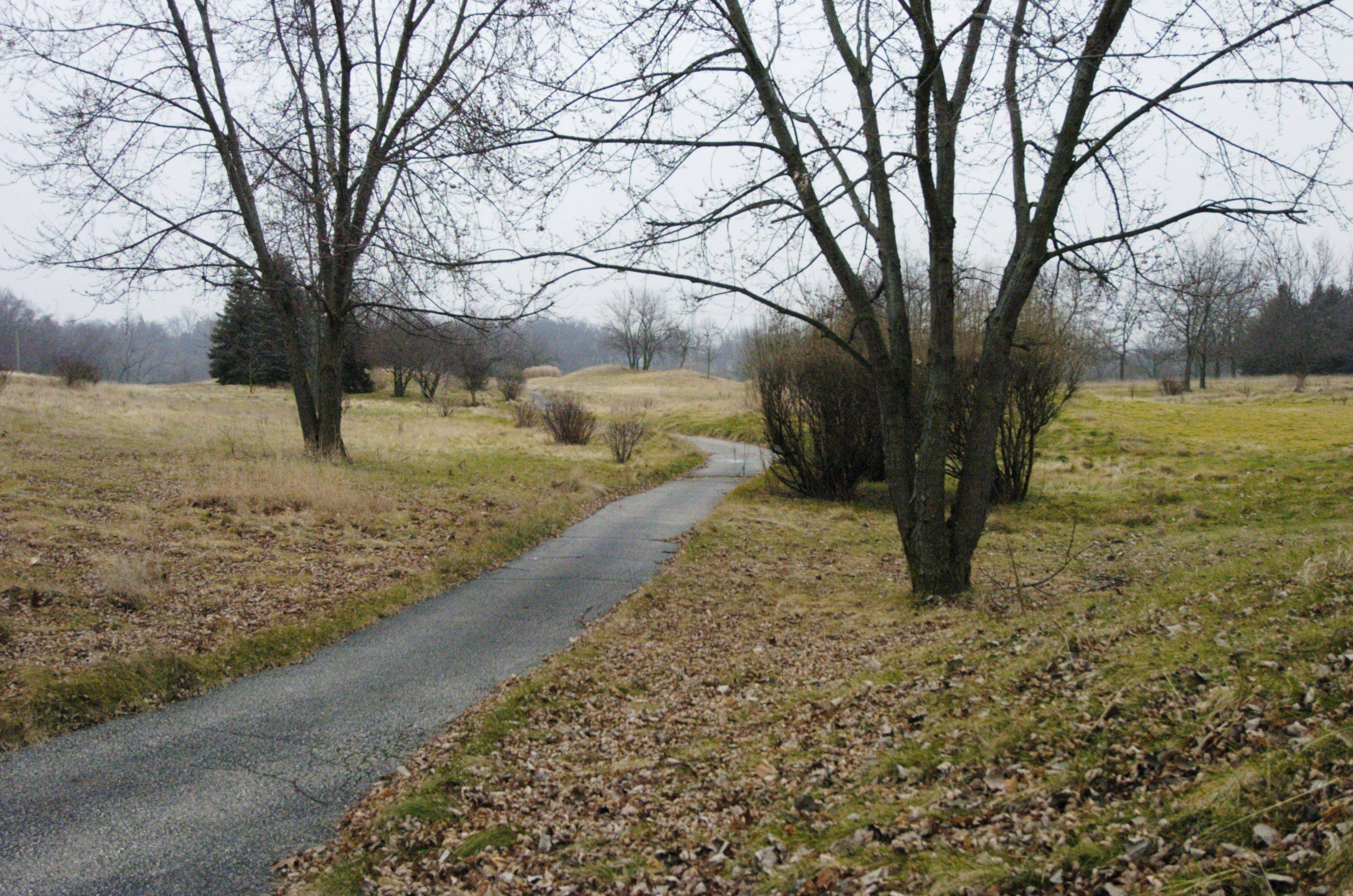 A cart path at the closed golf course.
