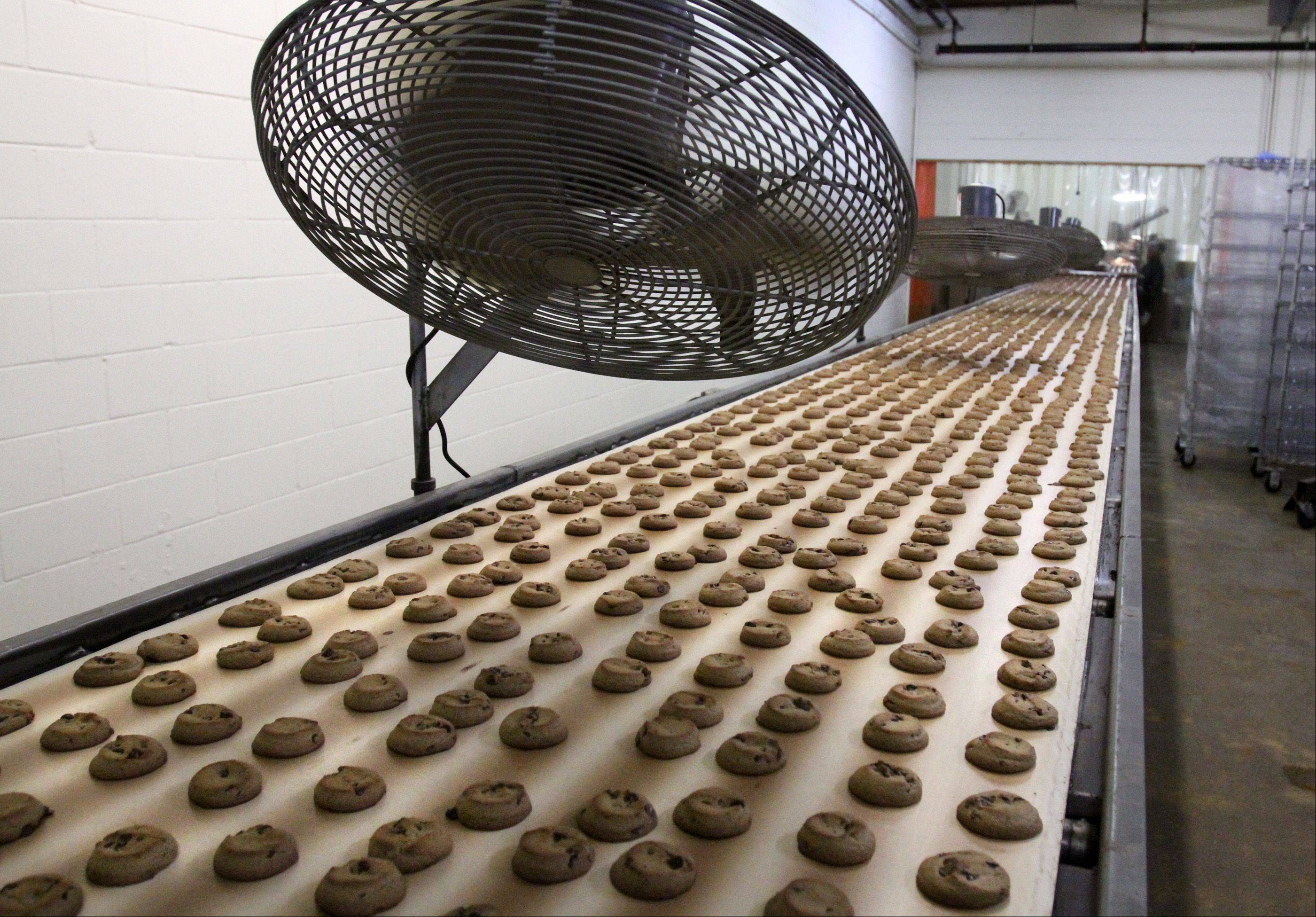 Chocolate chip cookies are cooled with fans before being packaged. Matt Pierce said no two cookies are the same shape so they have to be packaged by hand.