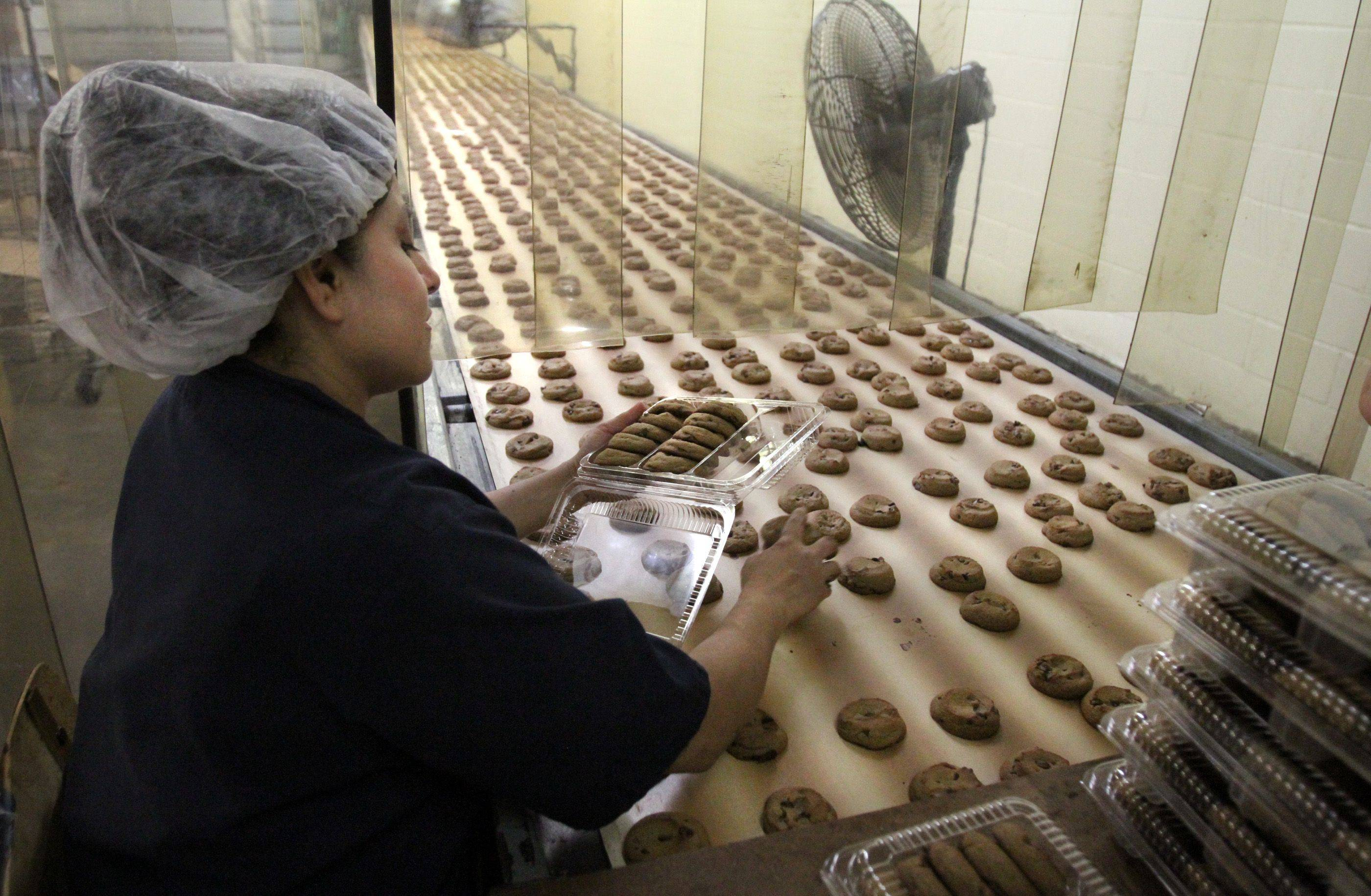 Fans cool chocolate chip cookies before they are hand packed by Irma Martinez at Matt's Cookies.
