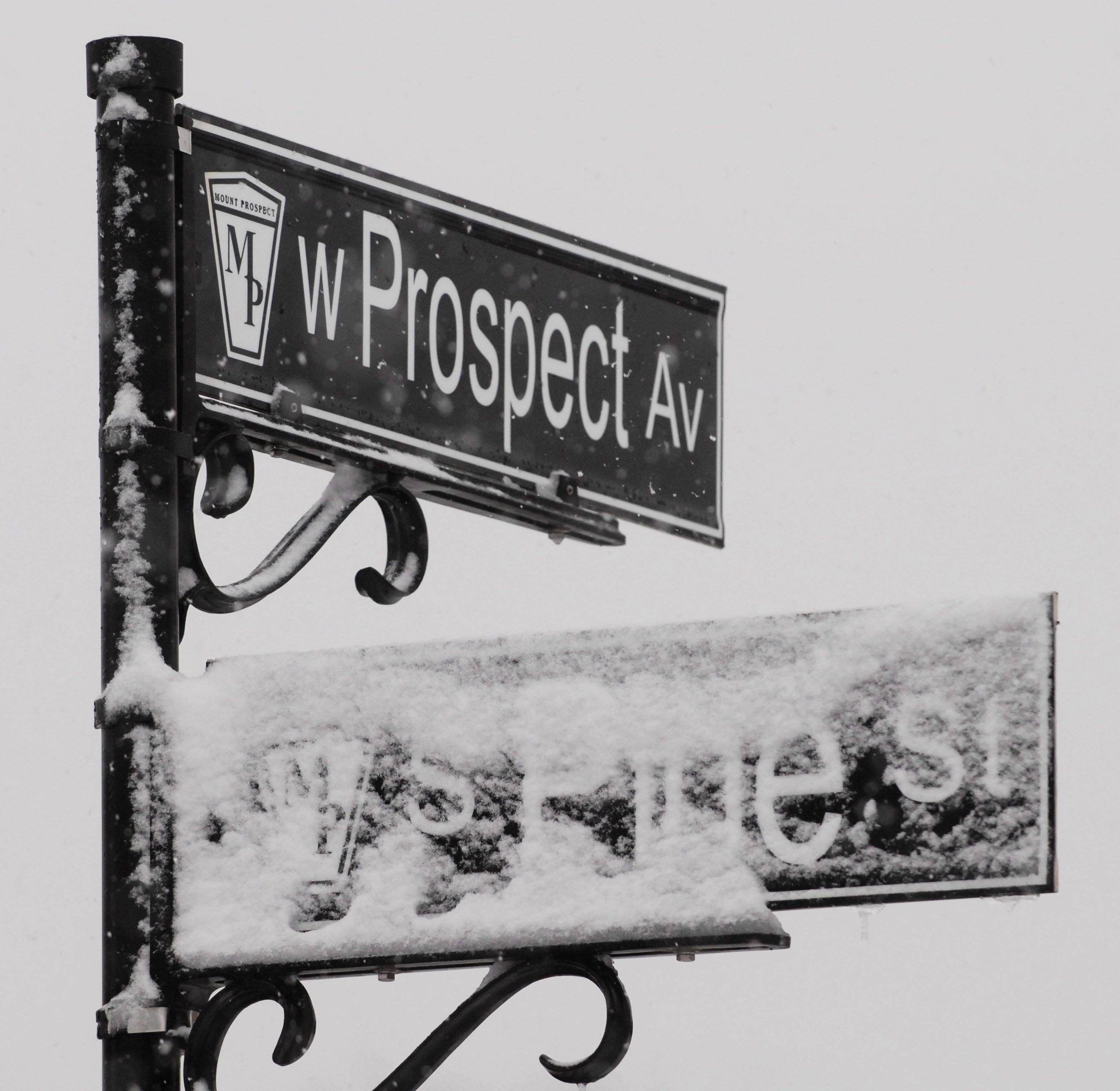 Snow covers one side of the street sign at the intersection of Pine Street and Prospect Avenue in Mount Prospect Thursday afternoon.