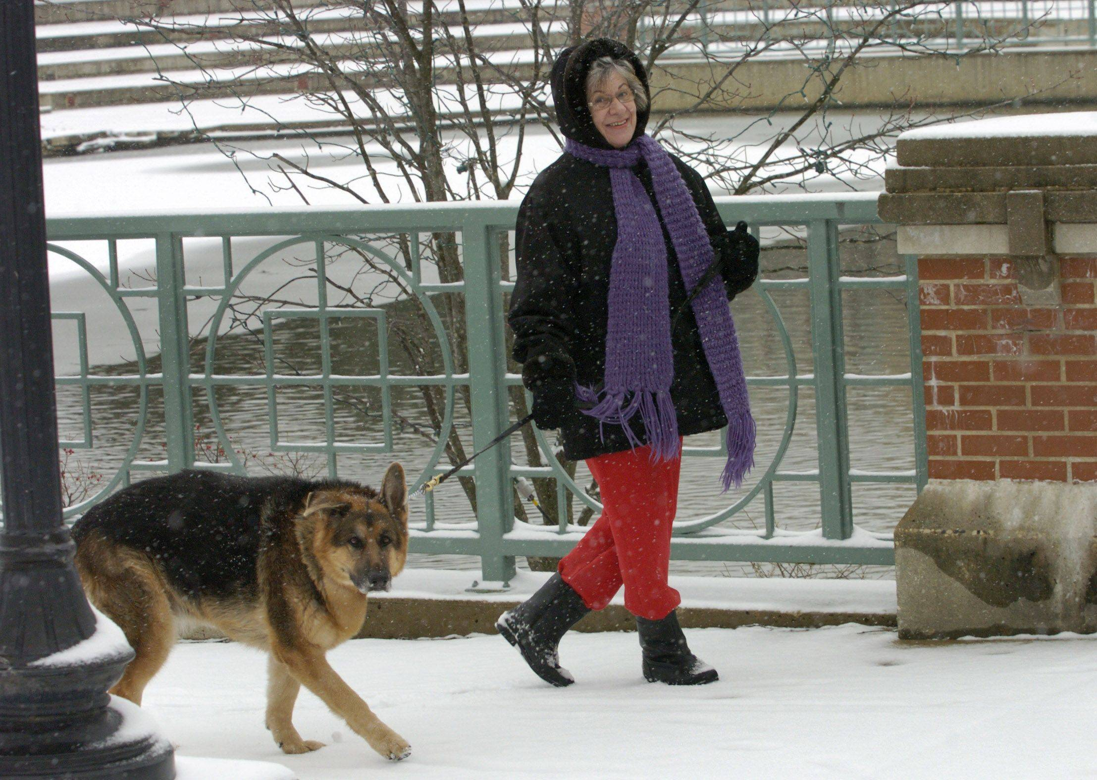 The weather didn't stop Maureen Adamek of Schaumburg from her daily walk with her German Shepard Gracie through Town Square in Schaumburg.