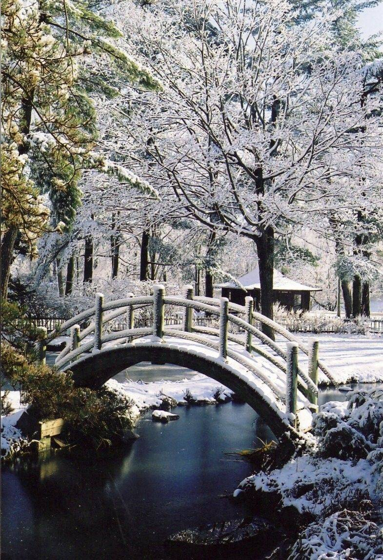 Take a snowy stroll during a Fabyan Japanese Garden Winter Walk in Geneva.