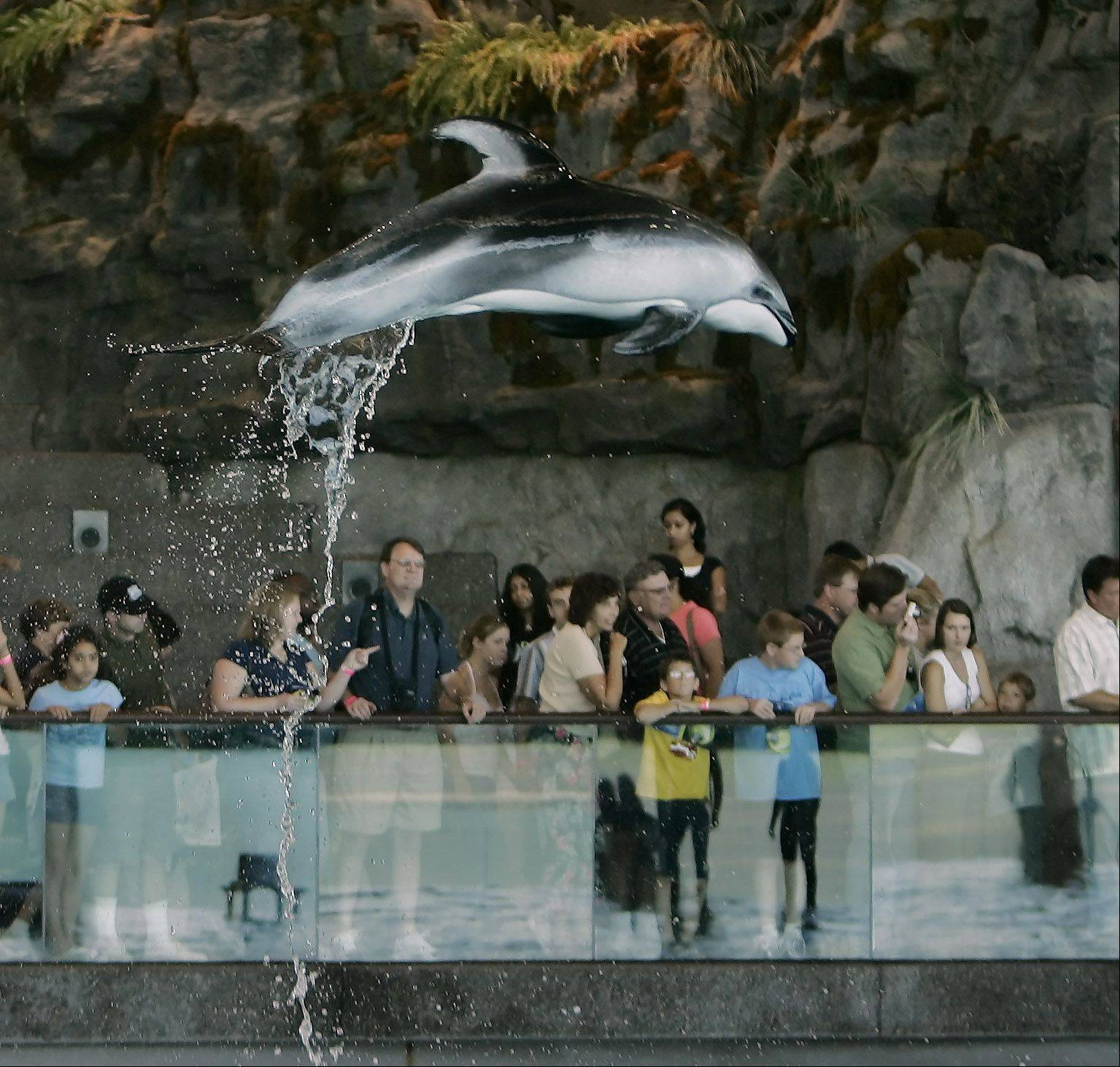 2.1 million guests visited Shedd in 2011